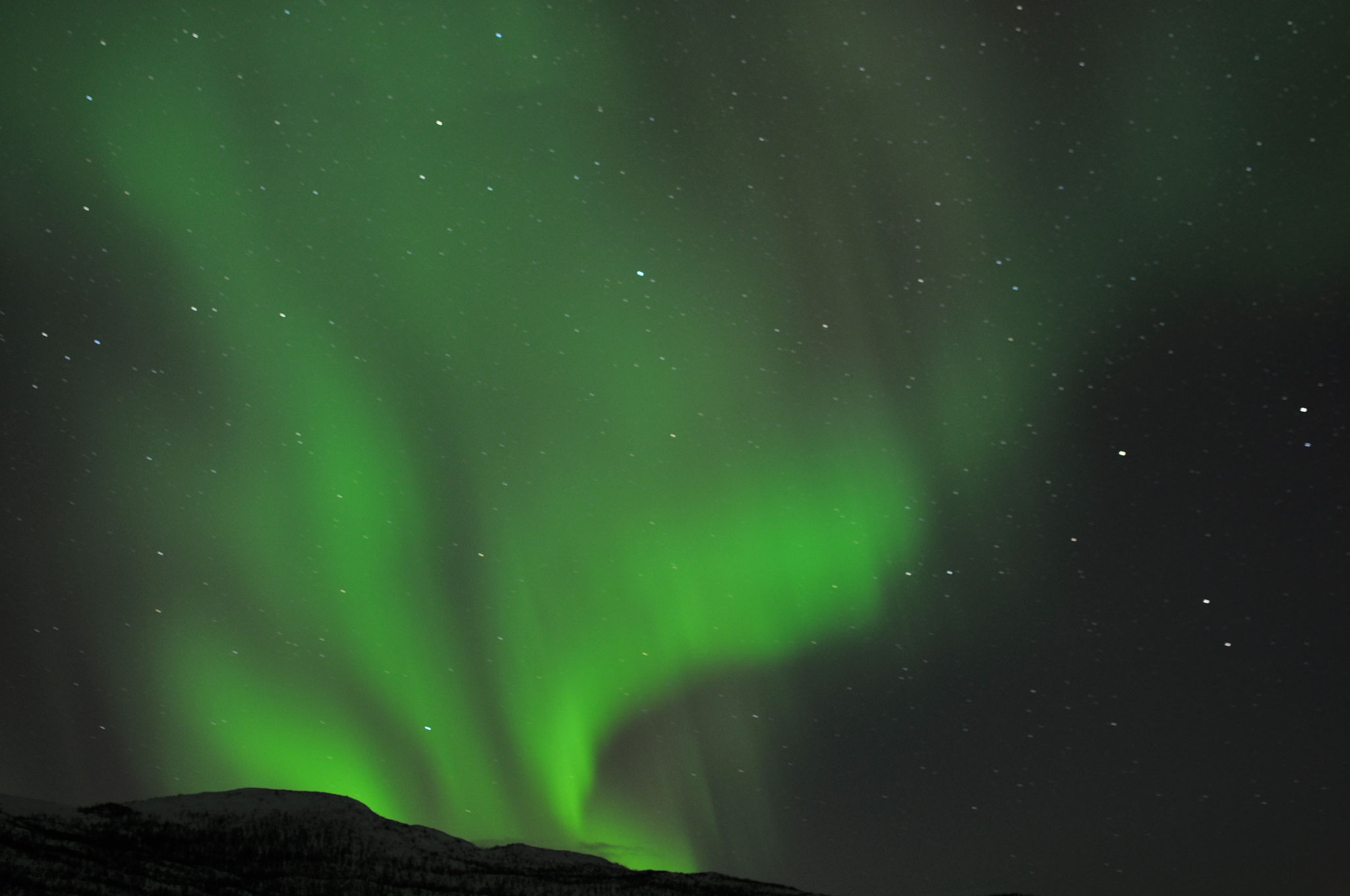 Norrsken - Aurora