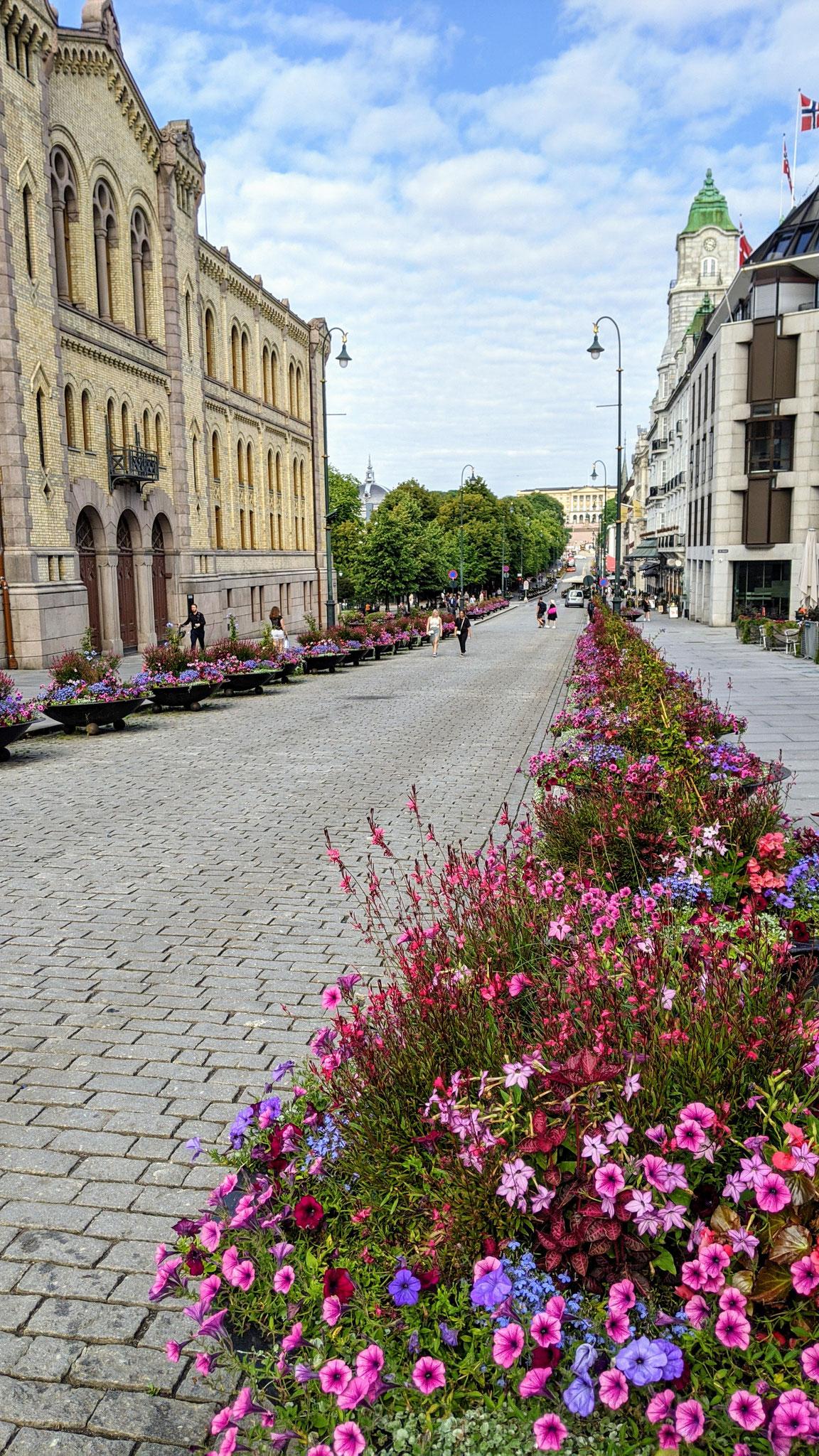 Allee zum Königspalast in Oslo (Foto: Paul Bonte)