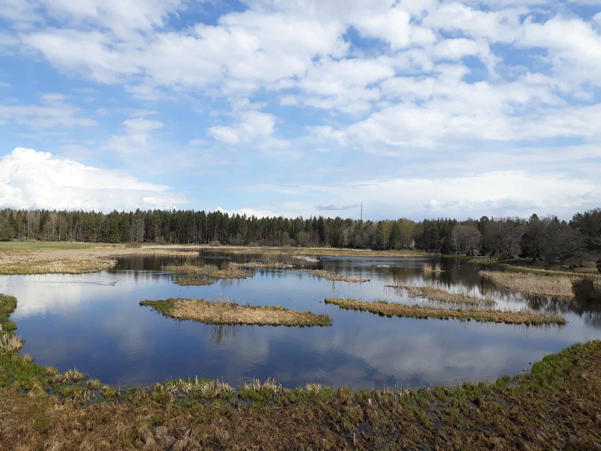 Naturreservat in Uppland - Paulines Heimregion