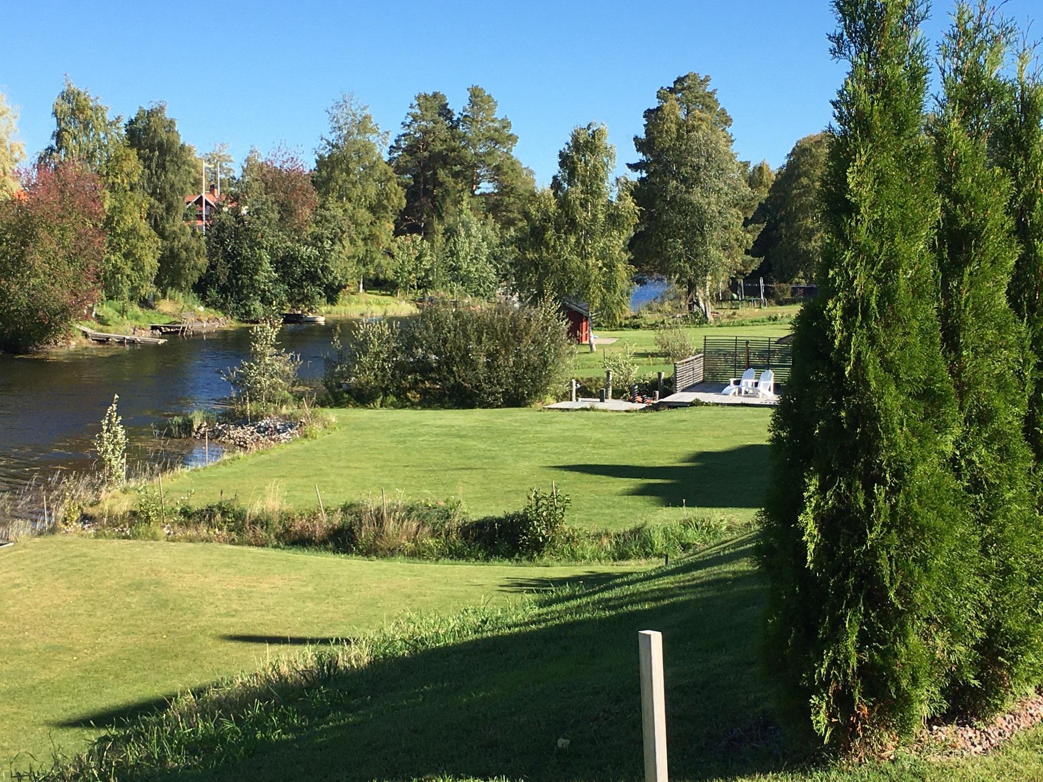 Vorgarten (Foto: Inga)