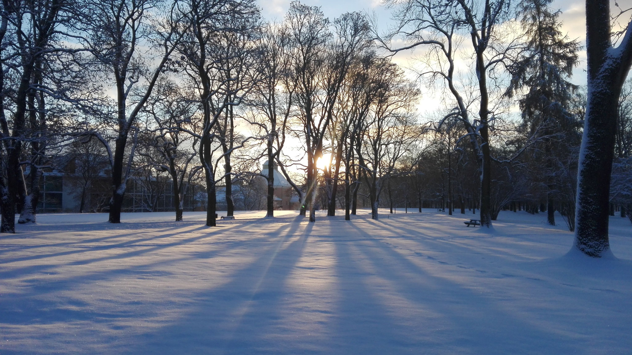 Winter in Uppsala