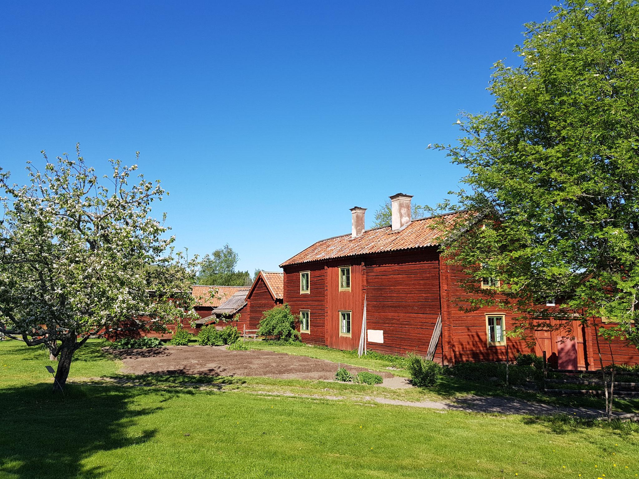 Traditionelle Schwedenhäuser in Gamla Uppsala