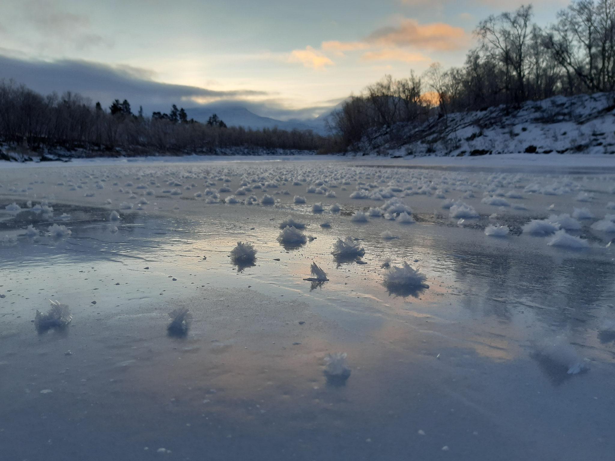 Eisblumen auf dem See