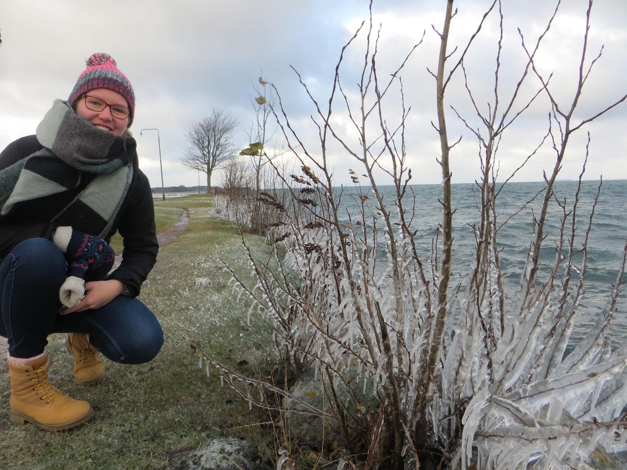 Anne Hemken bestaunt Eiszapfen am Vätternsee