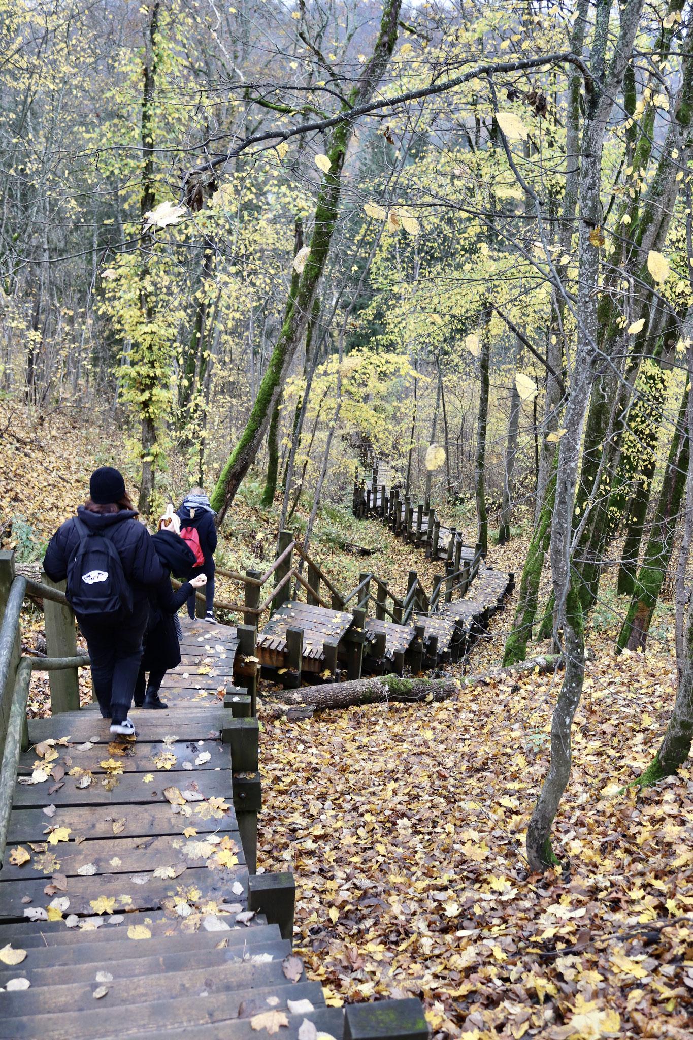 Treppen im Wald von Sigulda