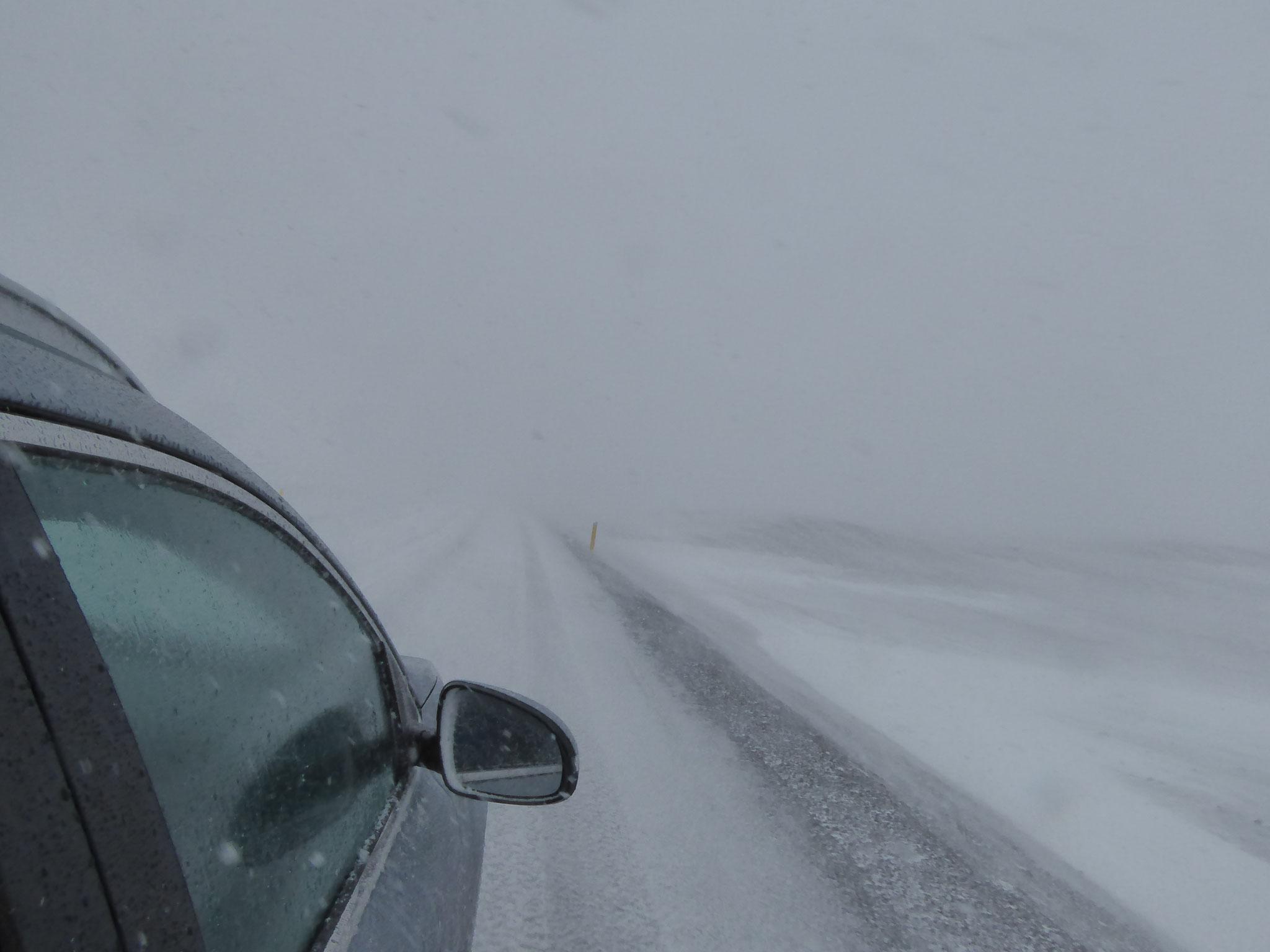 Schneegestöber mitten im Juni- typisch Island!