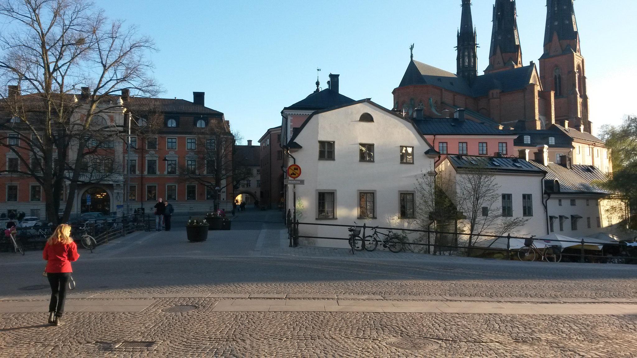 Der Dom und die alten Gebäude Uppsalas