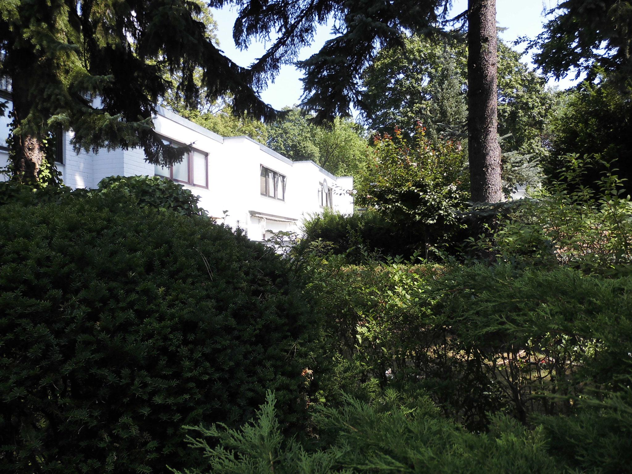 3,5-Zimmer Wohnung in Traumlage