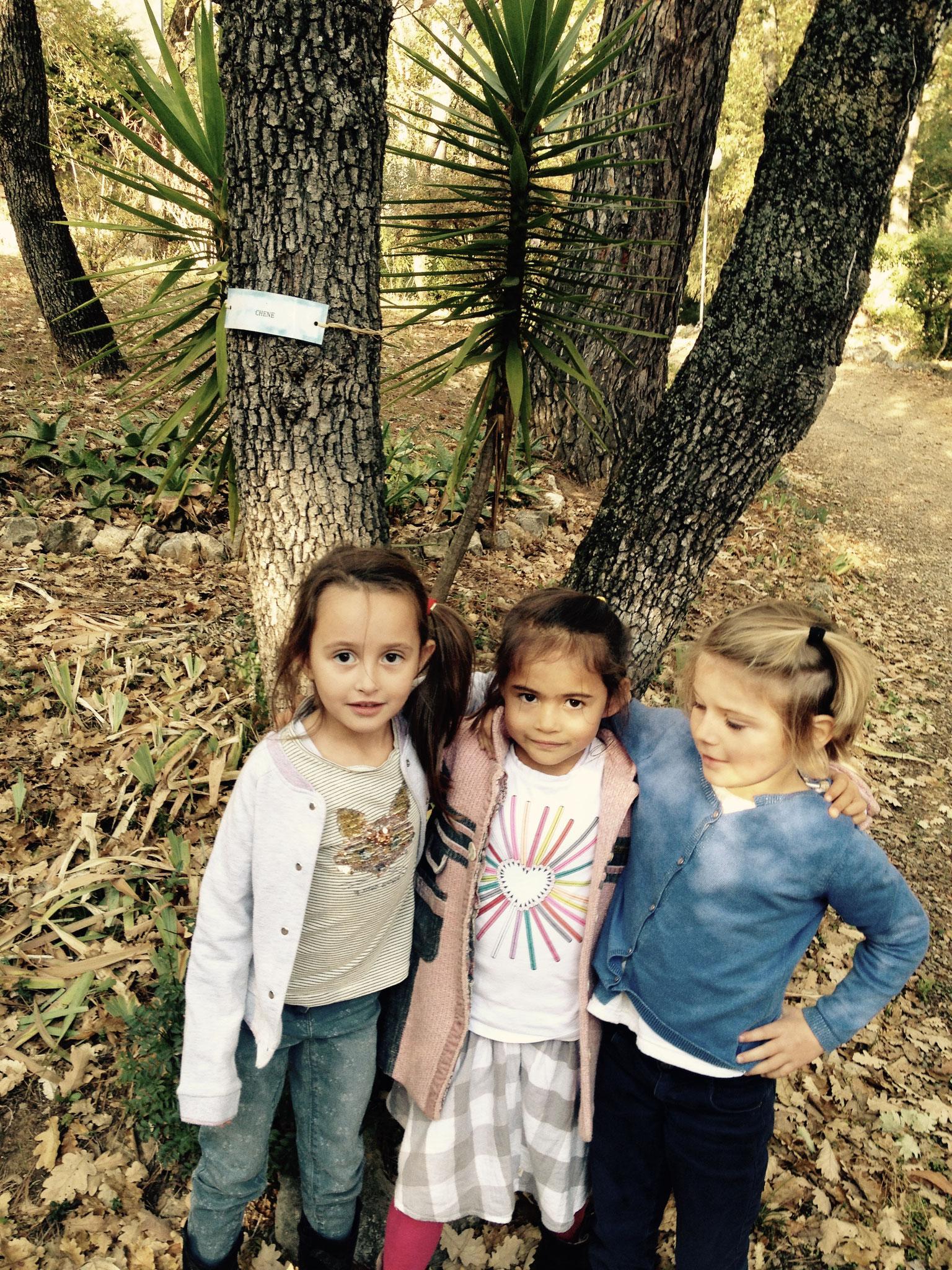 Sarah, Kathleen et Victoire devant le chêne