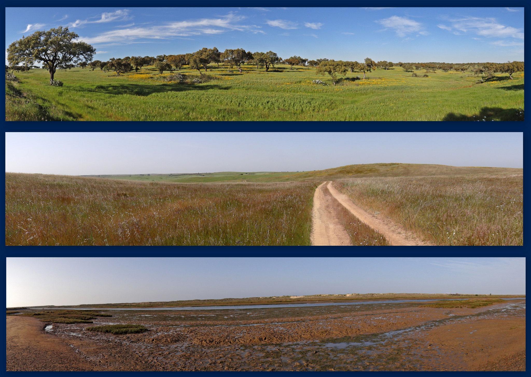 Landschaftliche Vielfalt in Süd-Portugal: Korkeichen-Montada, Grassteppenlandschaft, Salzlagune