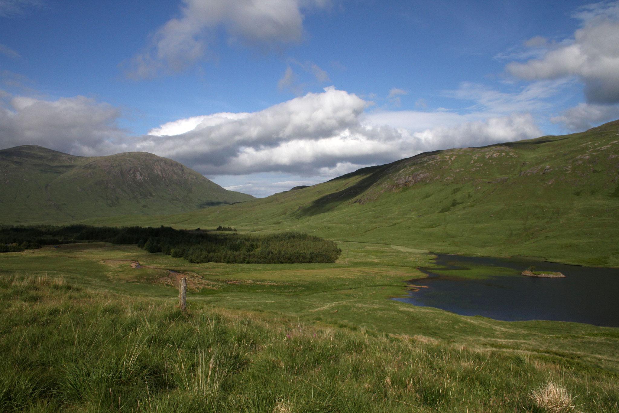 Bei den Three Lochs am Ben More soll es Steinadler, Sumpfohreulen und Kornweihen geben ... wir sehen dort weder noch.