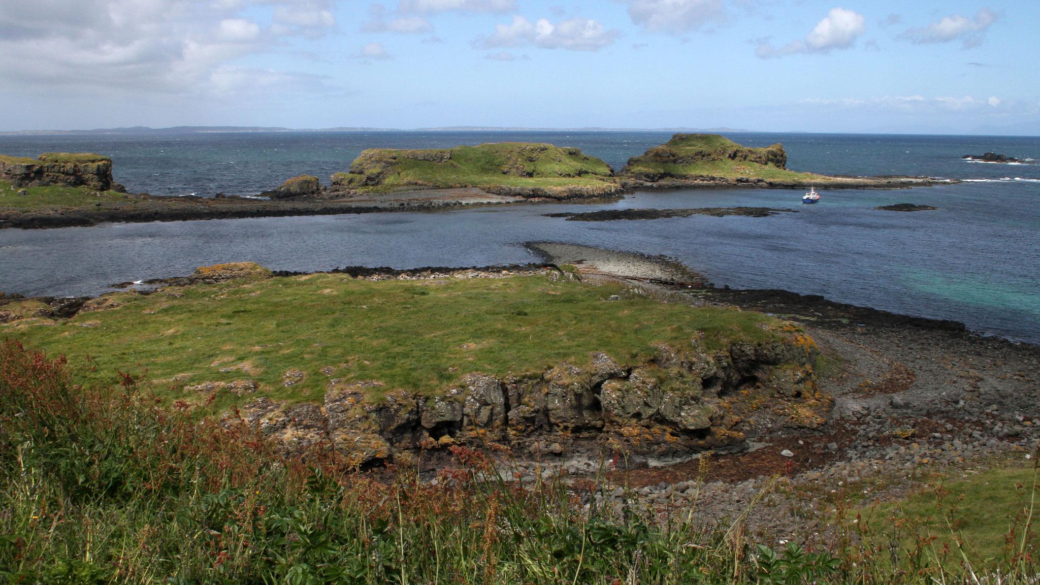 Ein ganztägiger Bootsausflug führt uns auf die Treshnish-Isles ...