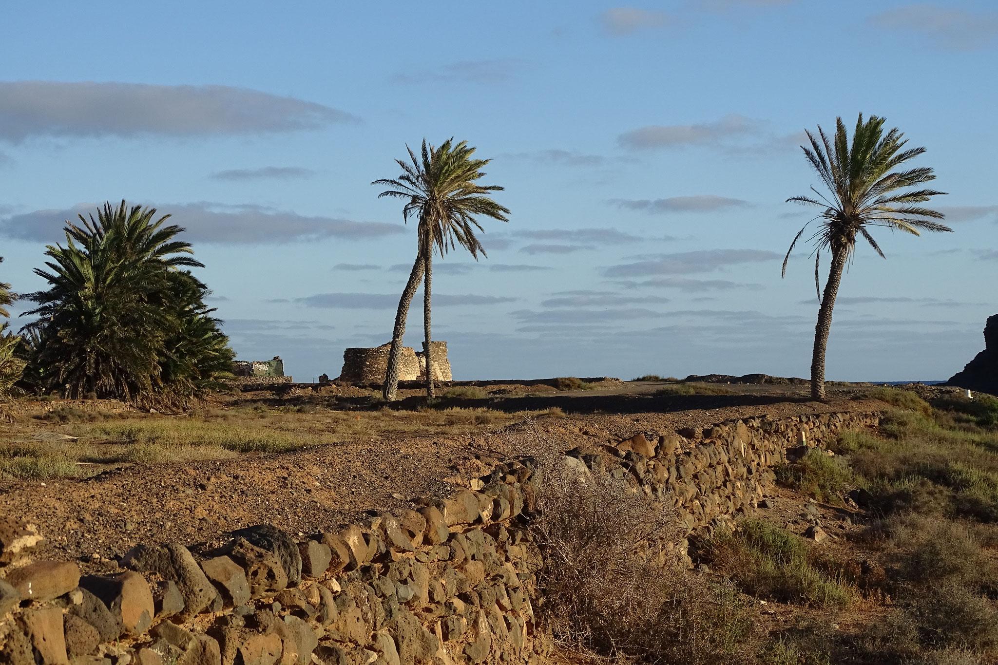 Unsere erste Entdeckungstour gilt dem Barranco de la Torre ...