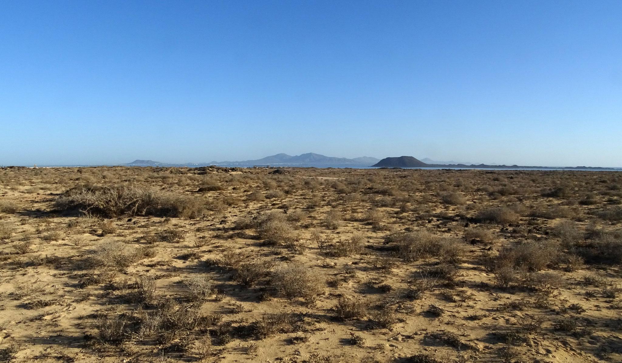 Von unserer Wohnung blicken wir auf den Parque Dunas de Corralejo, einem Dünen-Schutzgebiet, im Hintergrund die Insel Los Lobos und Lanzarote