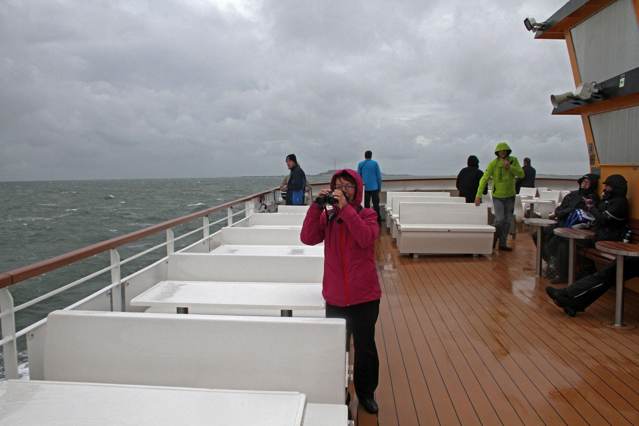 Trotz garstigem Wetter wagten sich auf der Überfahrt einige Vogelbeobachter an Deck der Fähre.