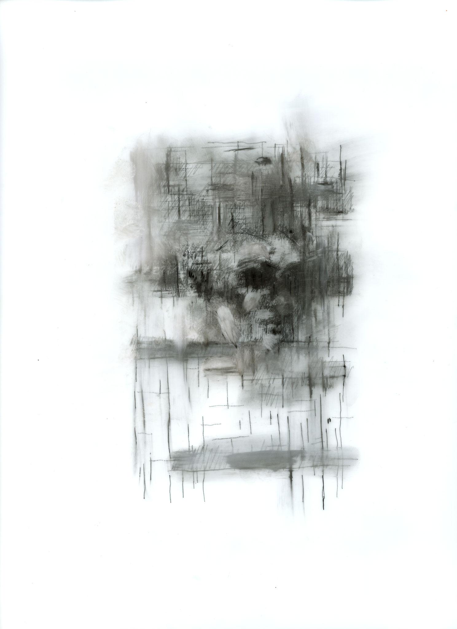 """Johanna Tiedtke, aus der Serie """"Flora"""", Bleistift auf Transparentpapier, 30,5 x 22,7 cm 2021"""