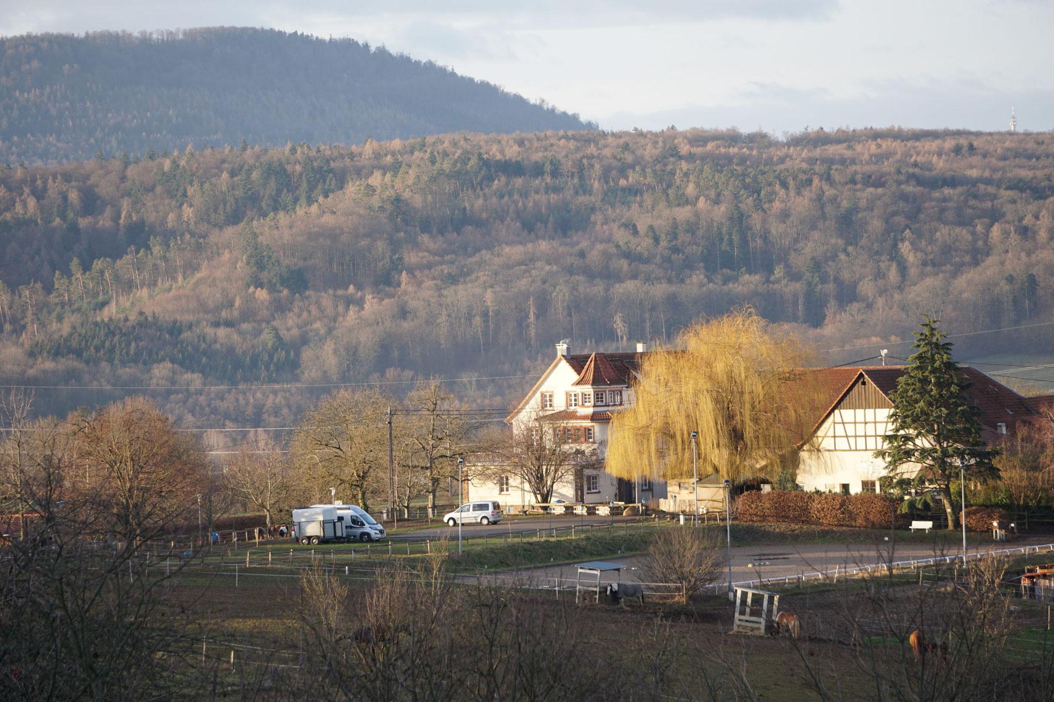 Blick vom Eichelberg