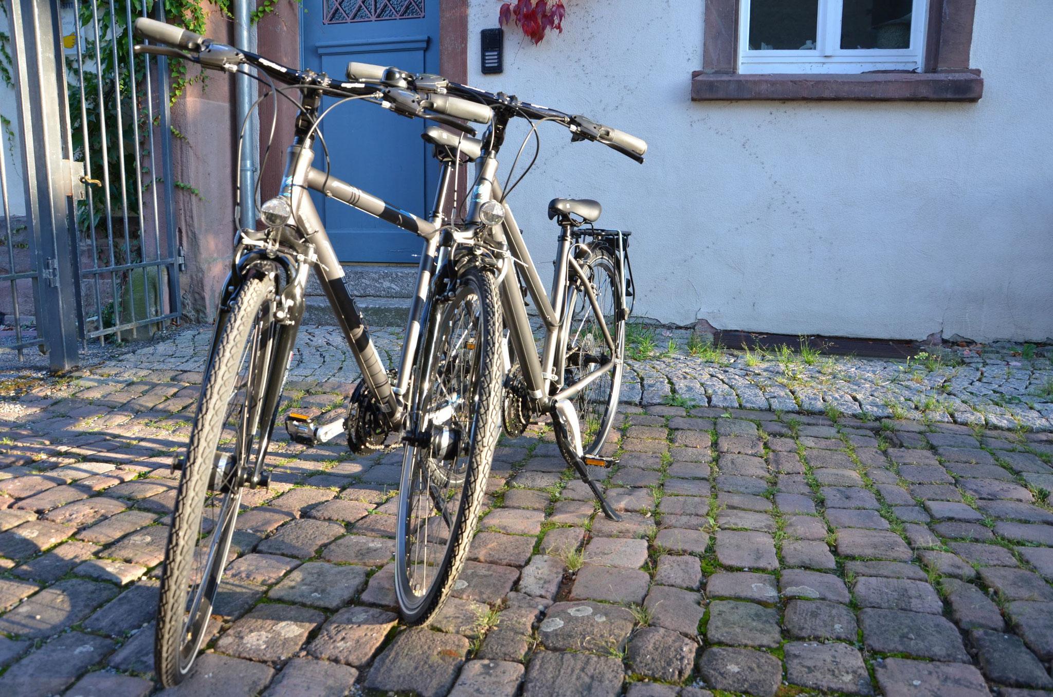 Mountainbikes zum leihen