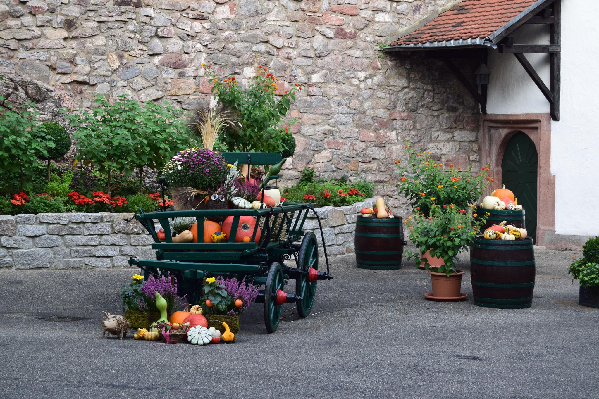 09-16 herbstliche Impressionen im Schlosshof