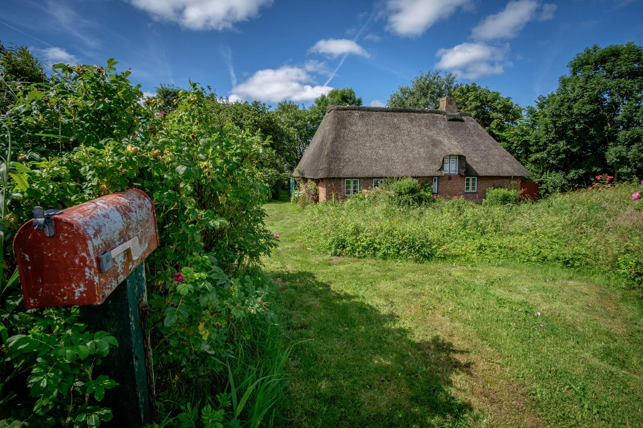 Rodenäs: Nachbarschaft (Foto: M. Heindrich)