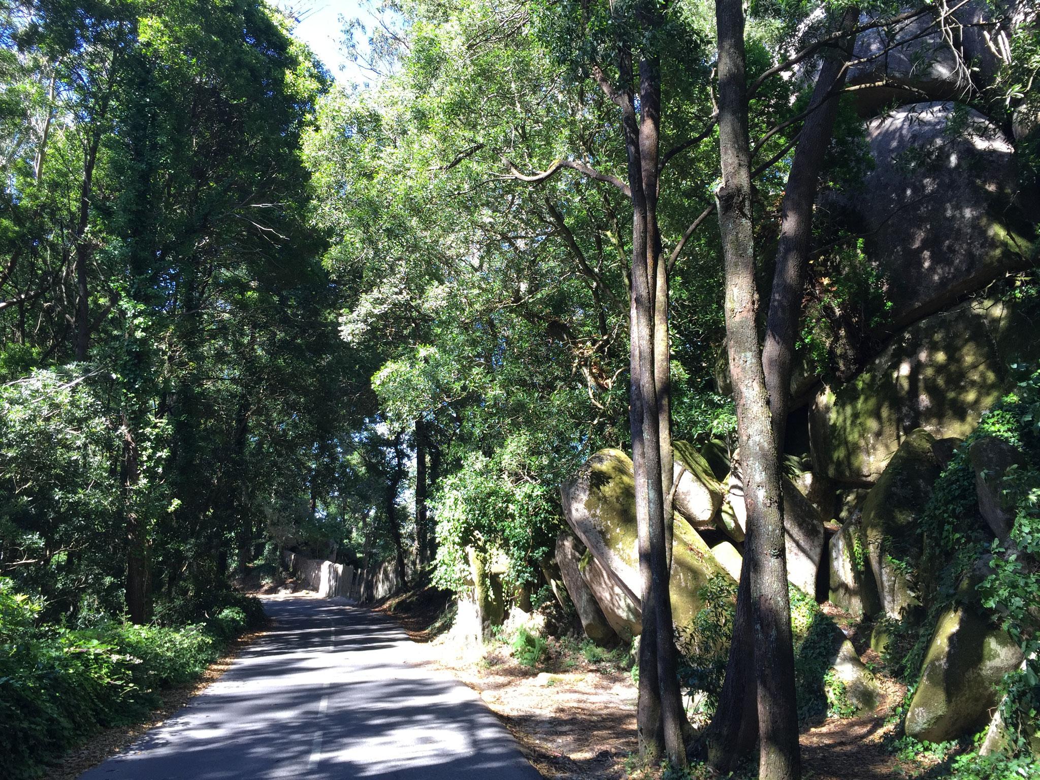 Naturpark Cascais/Sintra
