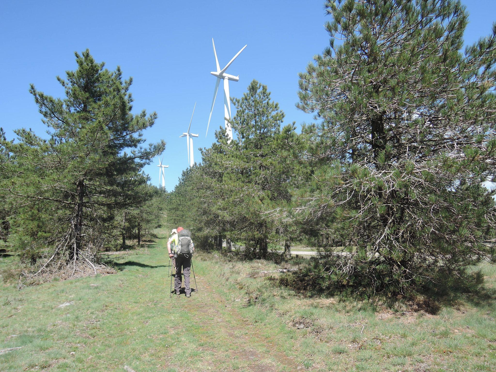 éoliennes près de Pradelles-Cabardès, randonneurs