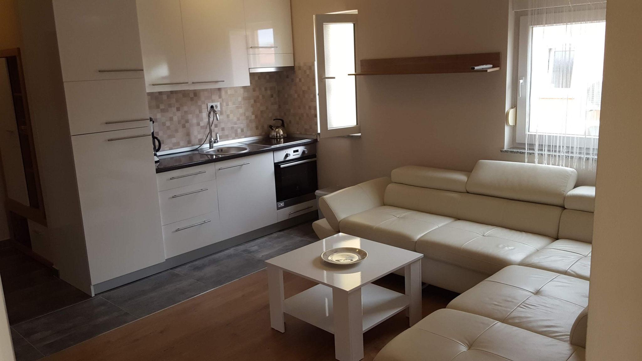 AP 3, Wohnraum mit Küche, neu renoviert 2017
