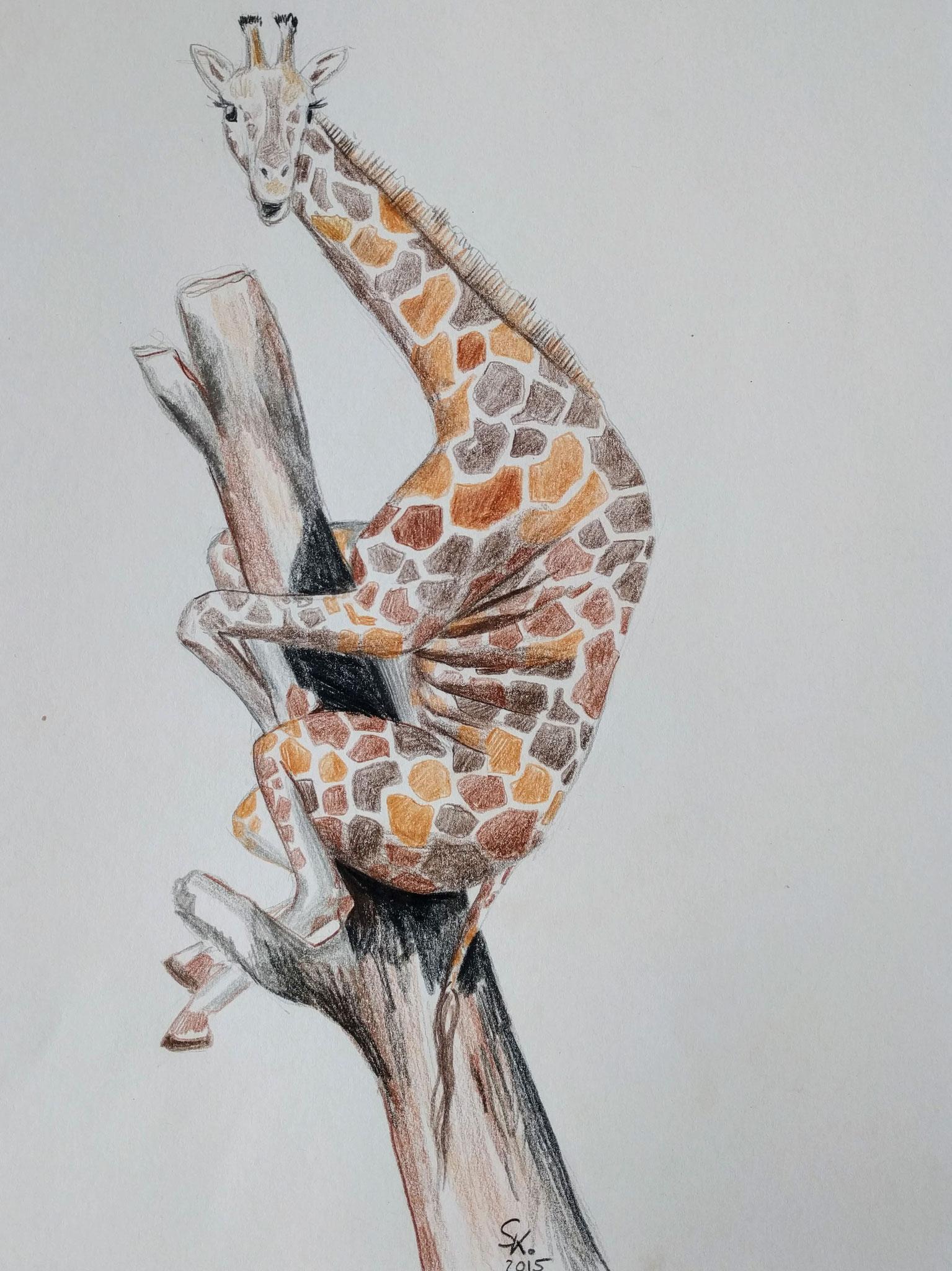 Giraffenangst (Zeichenpapier, 30x40cm)