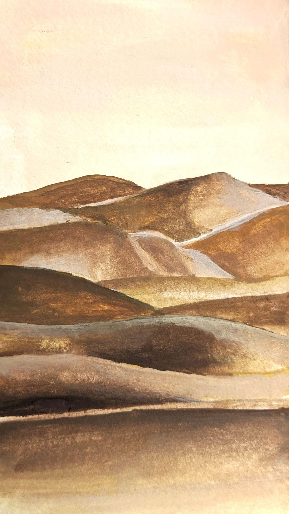 Wüste (Aquarellskizzenbuch)