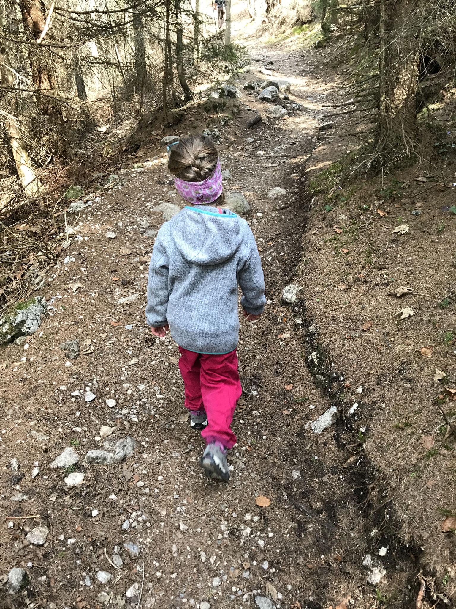 """Trail to """"Brunnsteinhütte"""""""