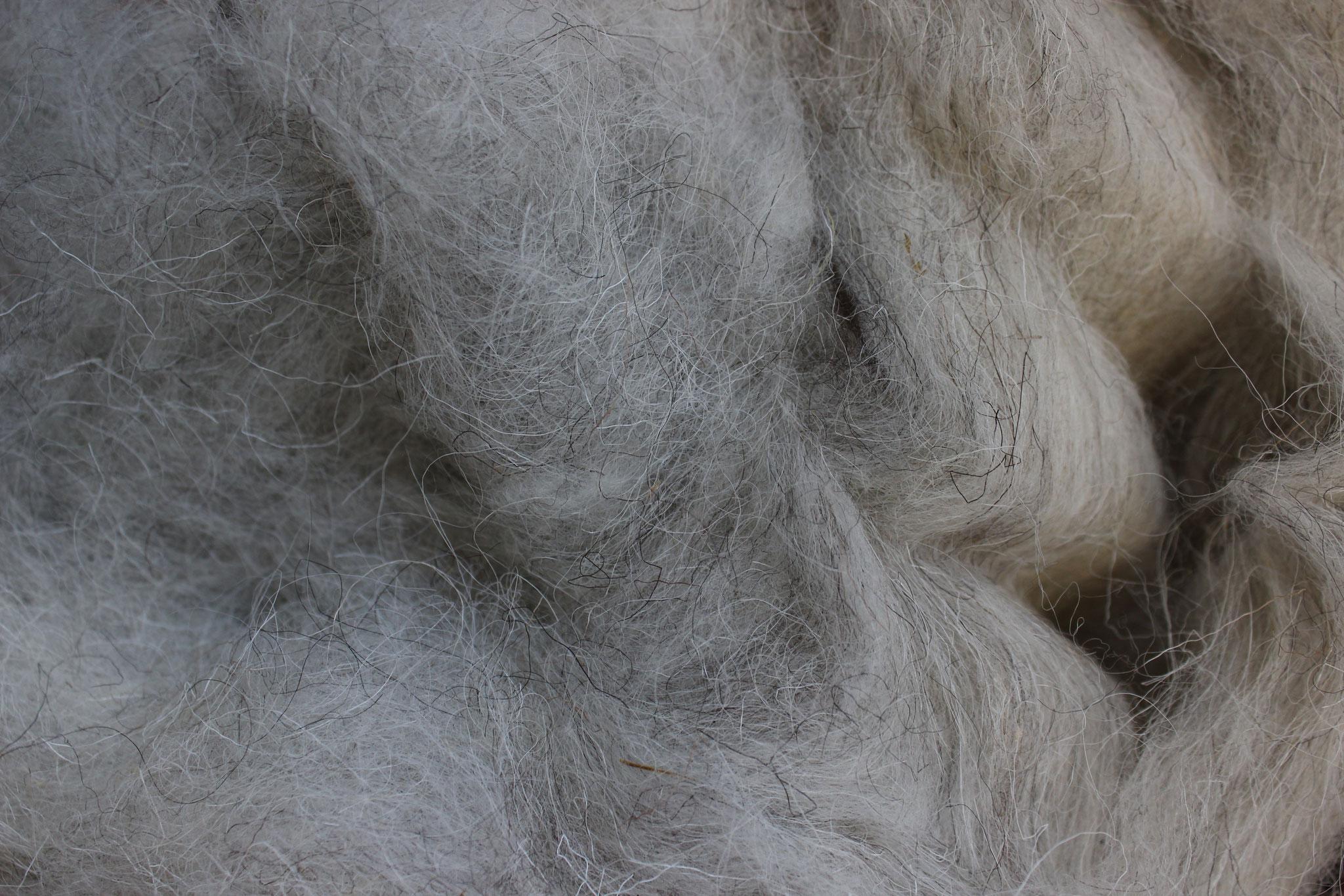 Heidschnuckenwolle