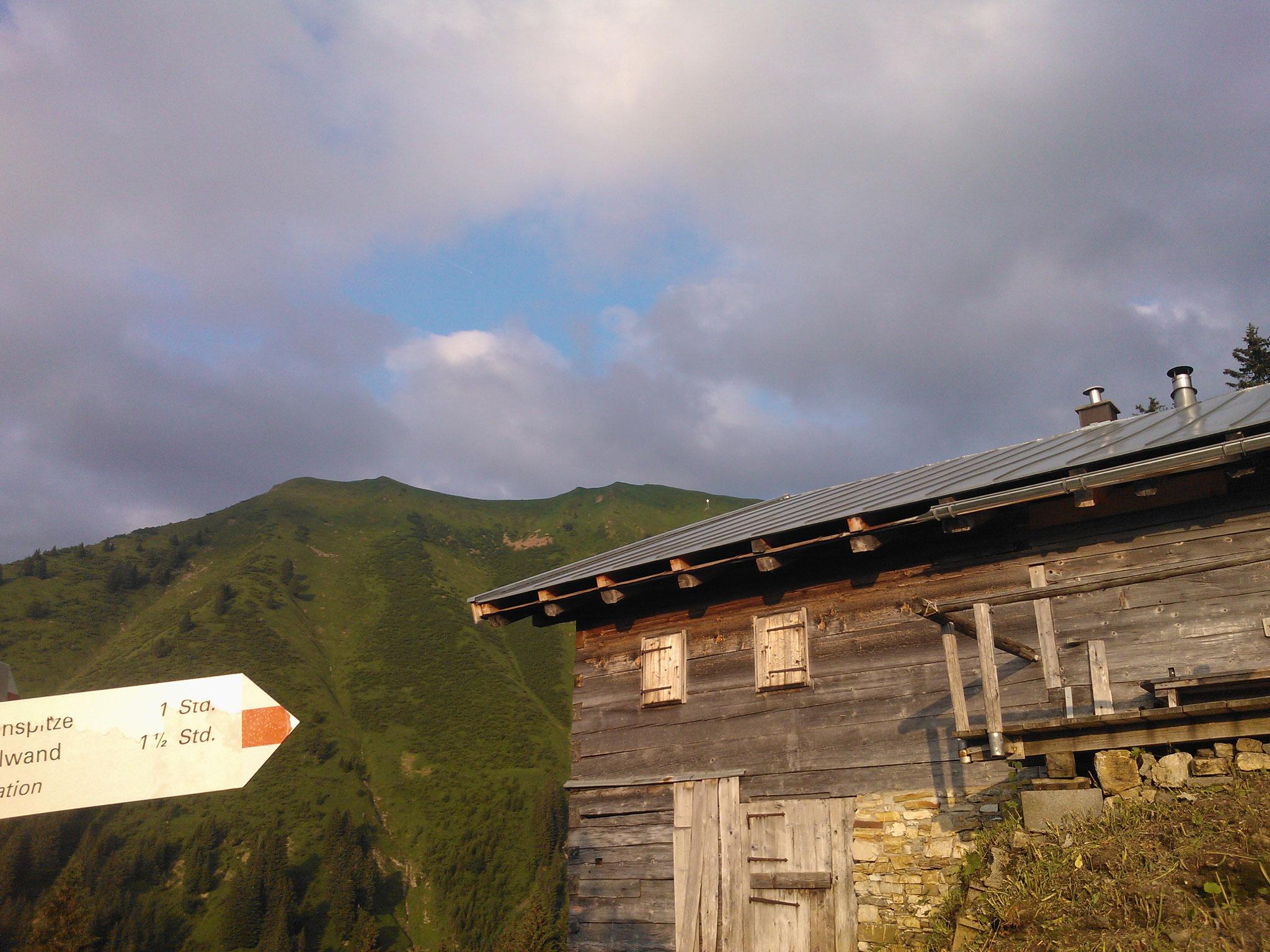 Die Riezler Alpe