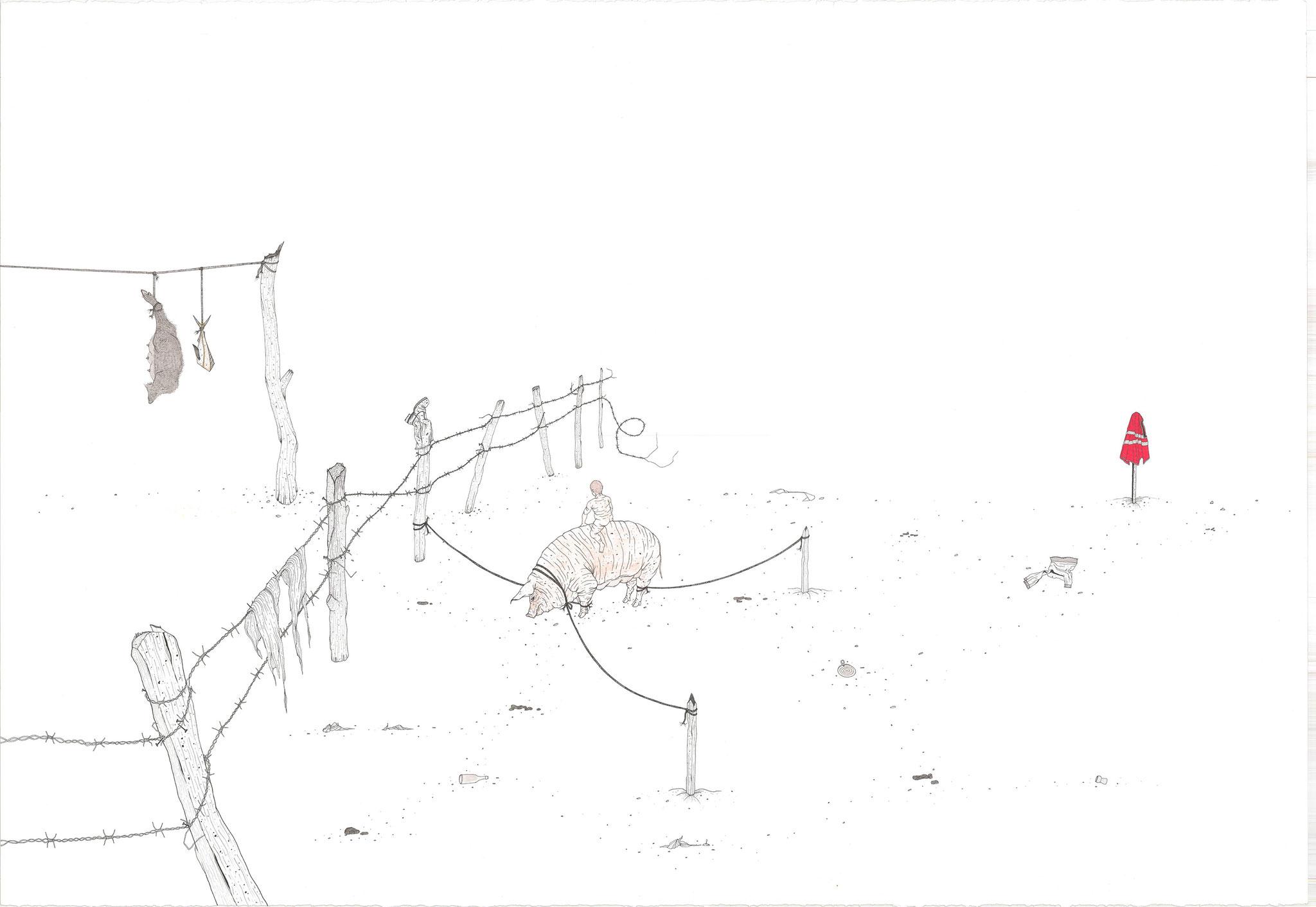 Coche, 2018.Plume et encre, rotring sur papier, aquarelle, 78 x 108 cm