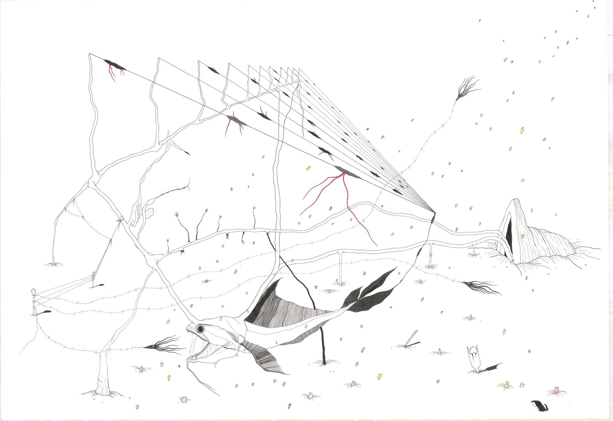 Mare (Neige Marine), 2018. Plume et encre, rotring sur papier, aquarelle, 73 x 110 cm