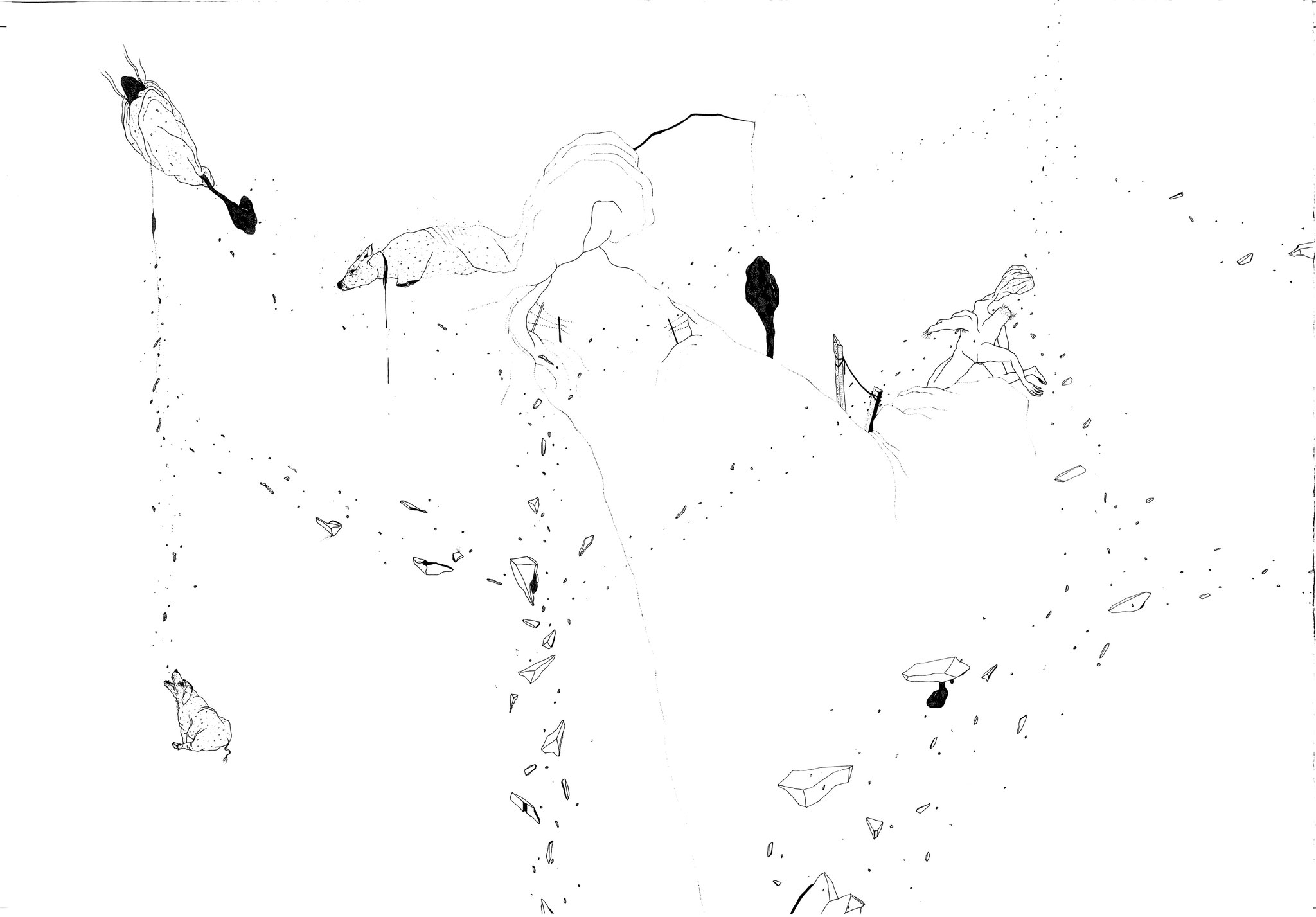Parcelle, 2018. Plume et encre, rotring sur papier, 76 x 108 cm