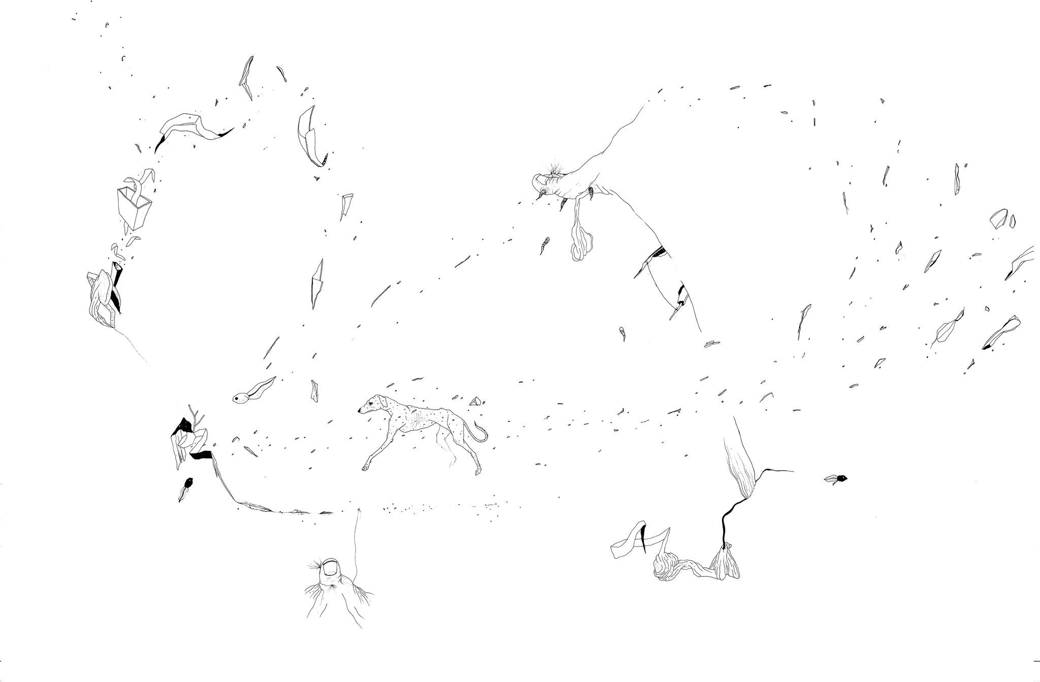 Calgo, 2018. Plume et encre, rotring sur papier, 73 x 118 cm