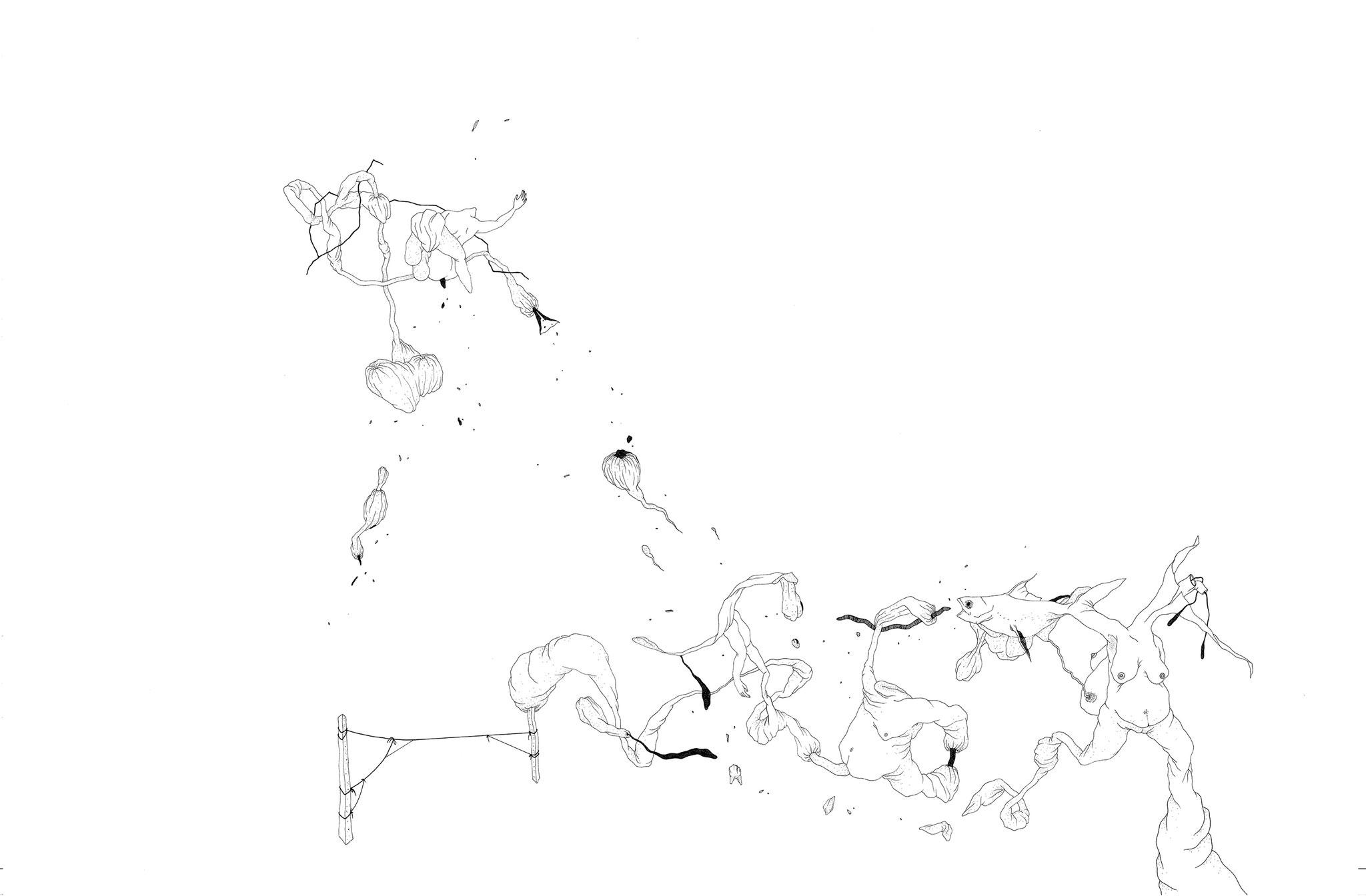 La Danse (Pangasius), 2018. Plume et encre, rotring sur papier, 73 x 110 cm