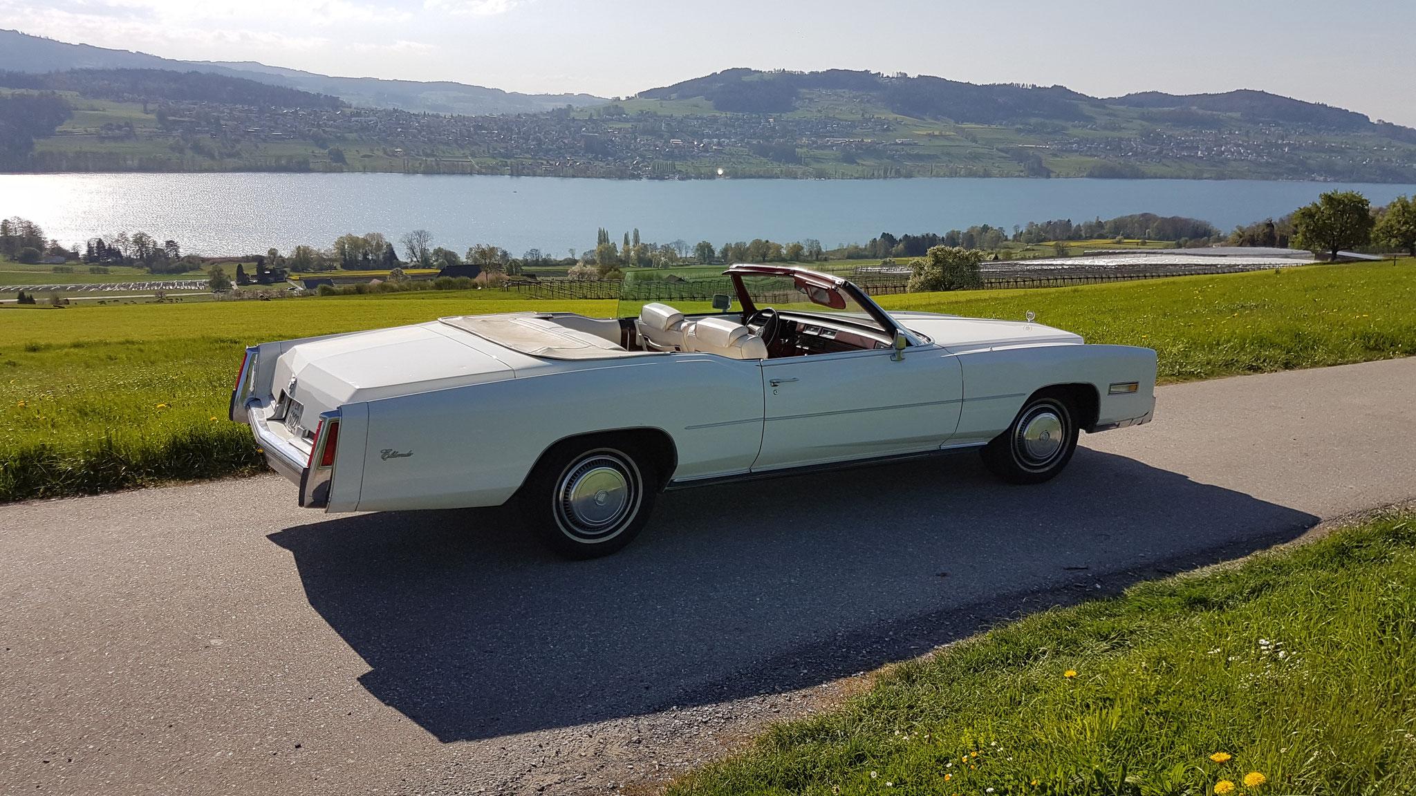 Cadillac in der Honeriweid mit Sicht auf den Hallwilersee