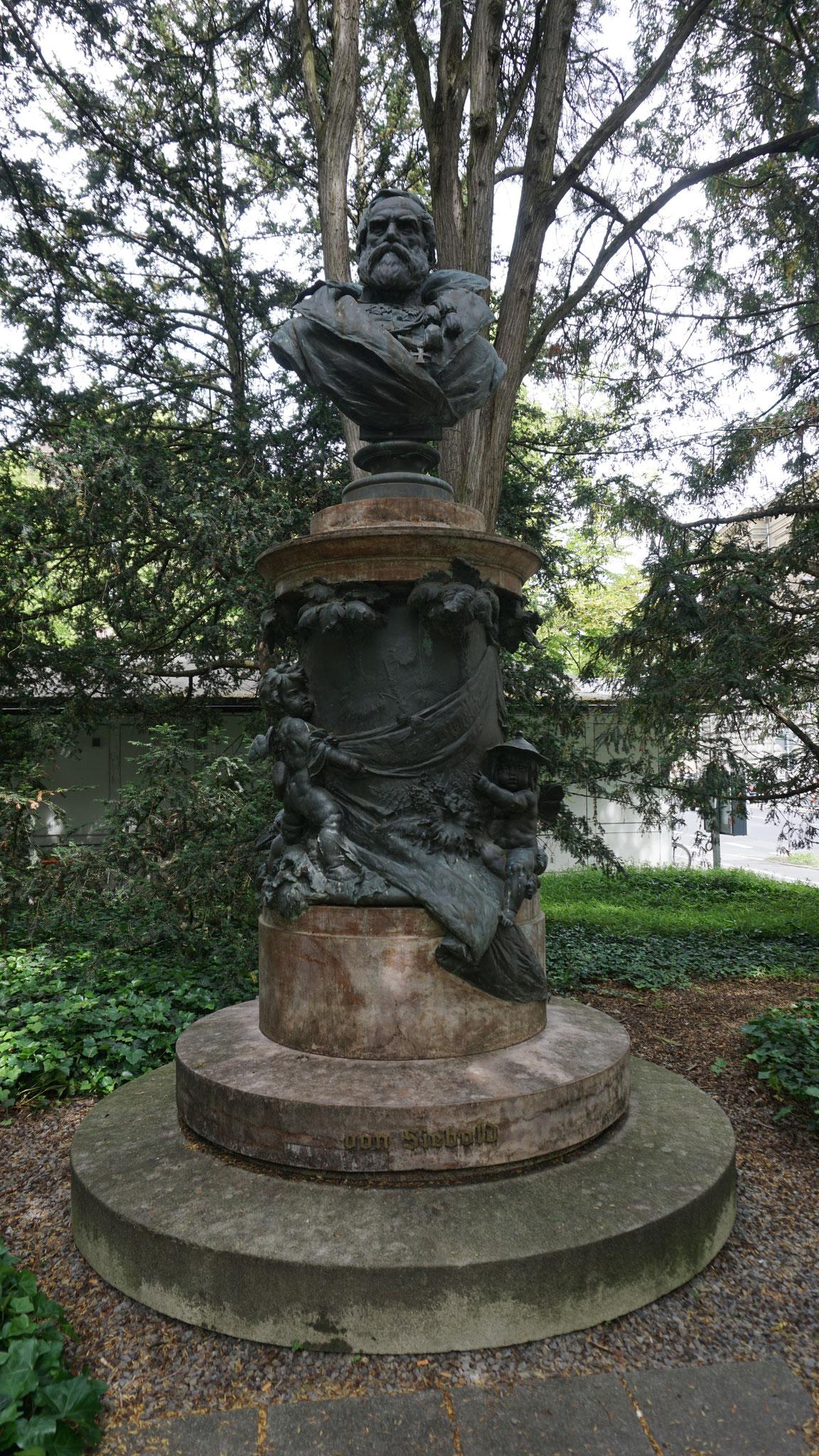 Siebold-Denkmal, Ringpark, Würzburg