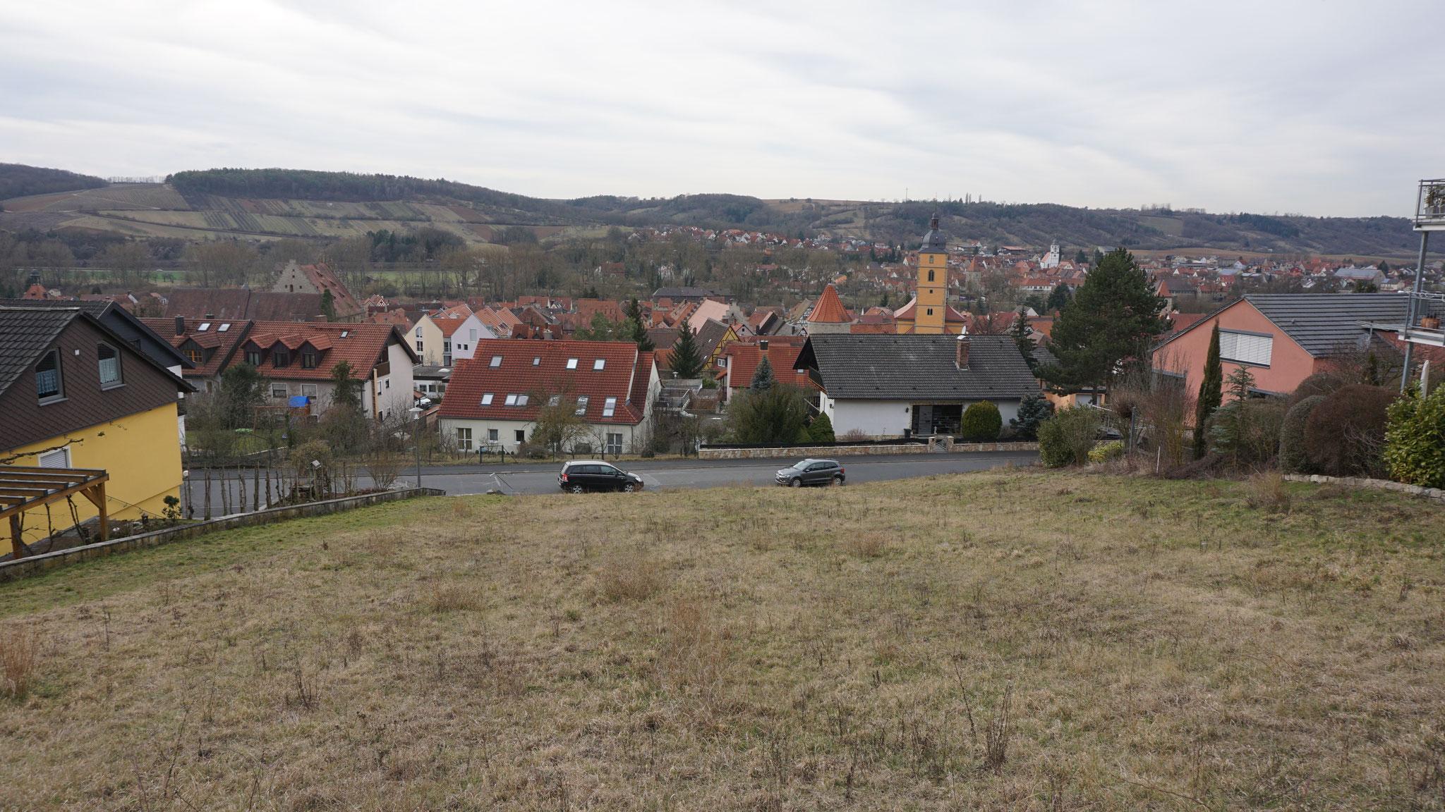 Auf diesem unbebauten Grundstück soll Johannas Traumgarten sein