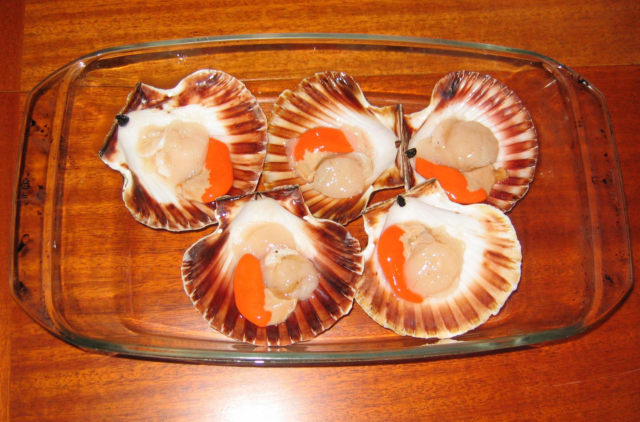 Frische Jakobsmuscheln sind mit das Beste, was aus bretonischen Gewässern kommt.