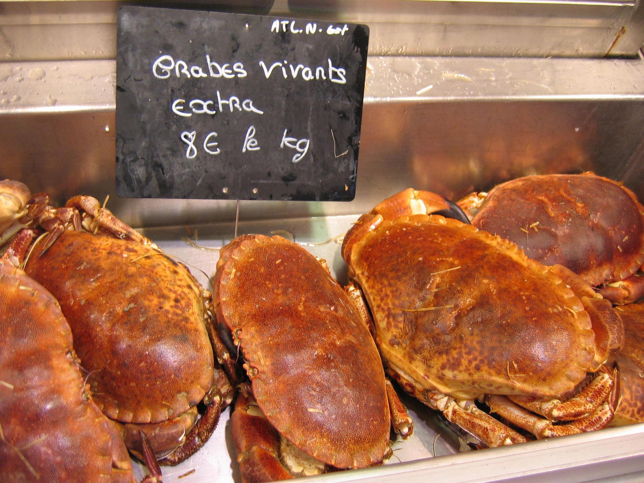 Taschenkrebse sind nur eines der kulinarischen Highlights der Bretagne