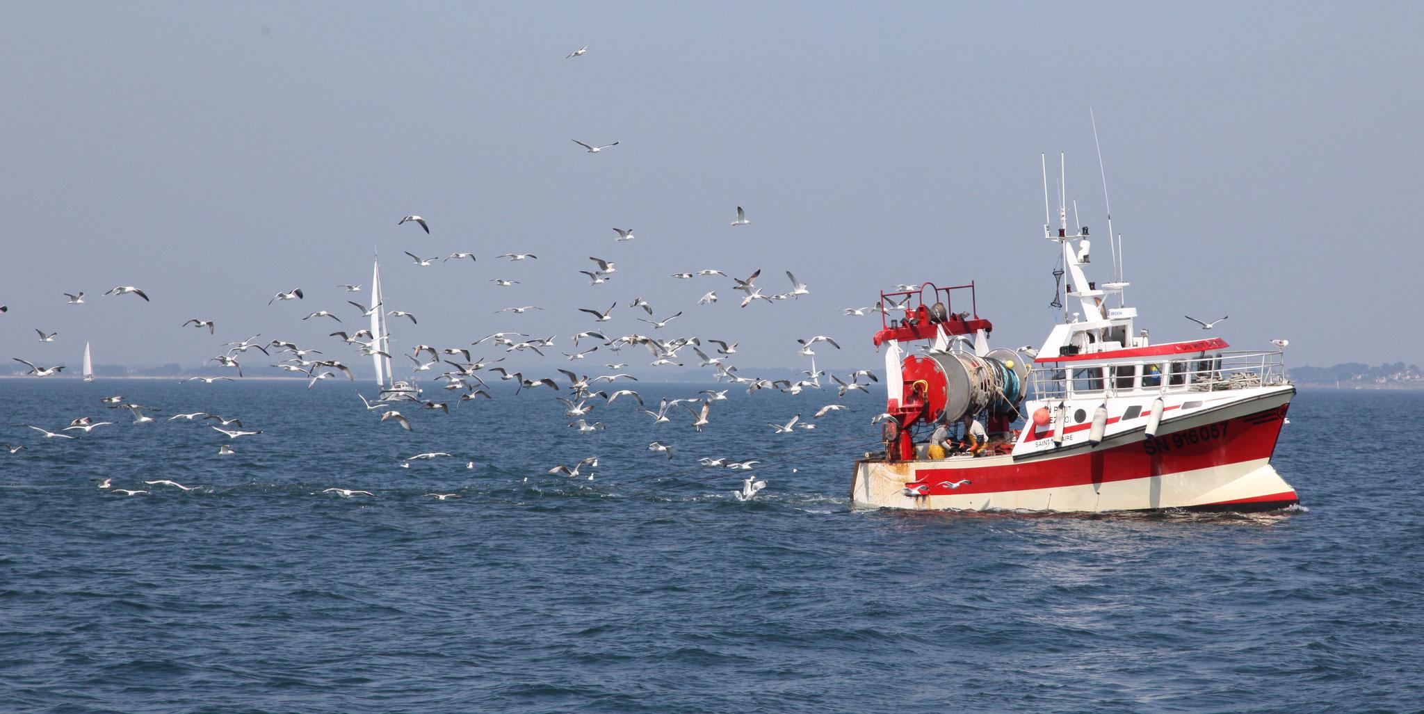 Die Fischerei ernährt in der Bretagne noch immer zahlreiche Familien