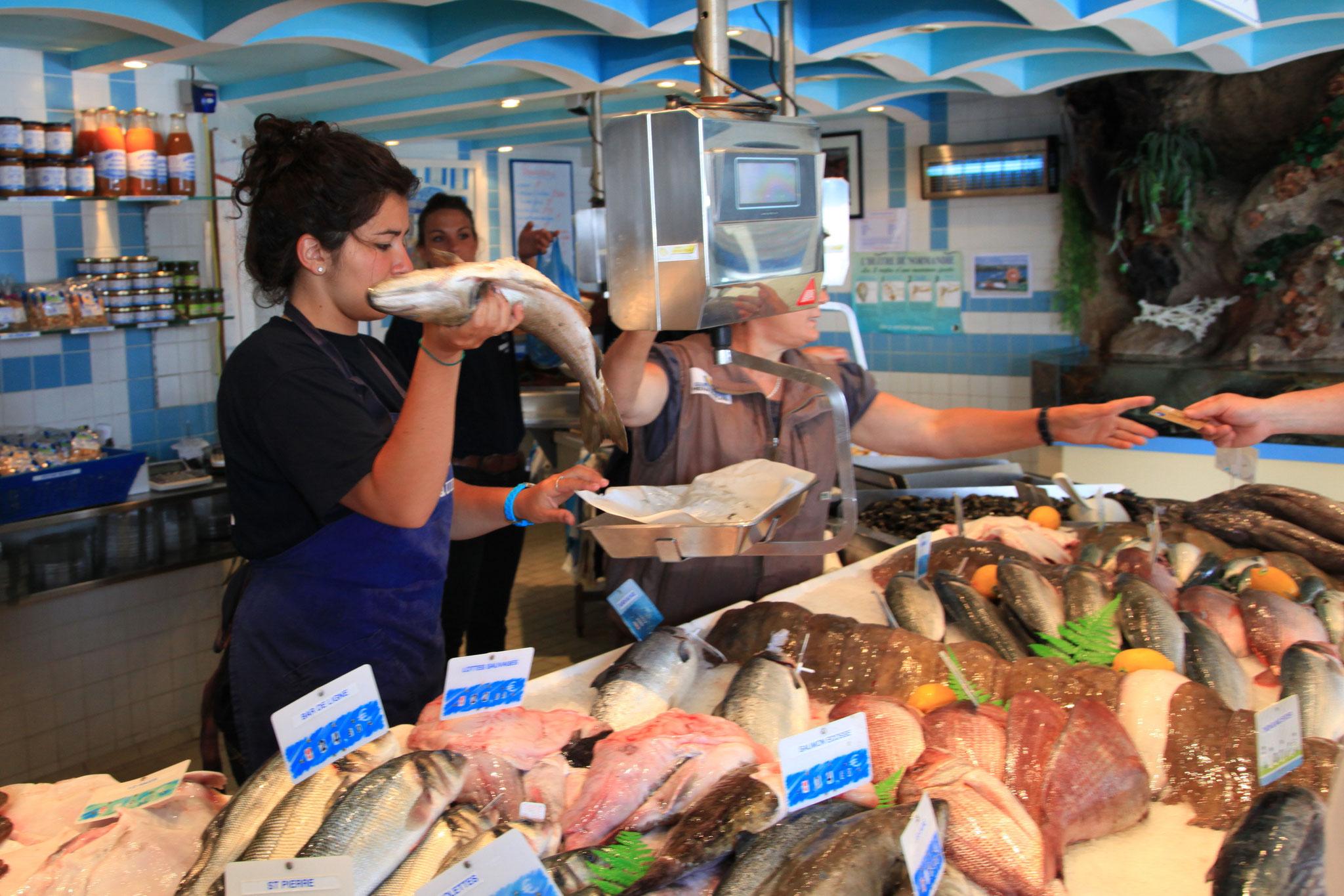 Fisch und Meeresfrüchte im Überfluss