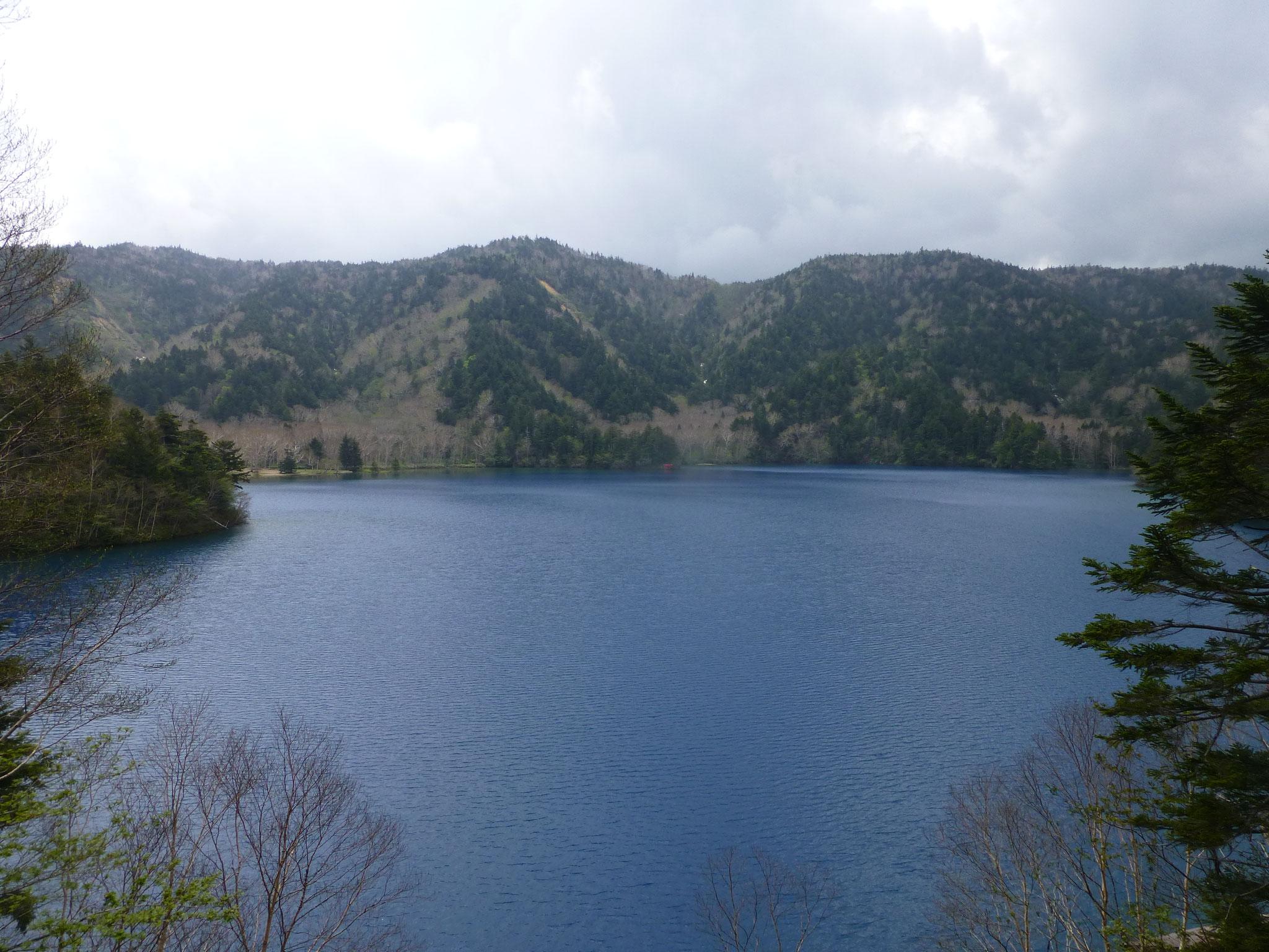 コバルトブルーの大沼池