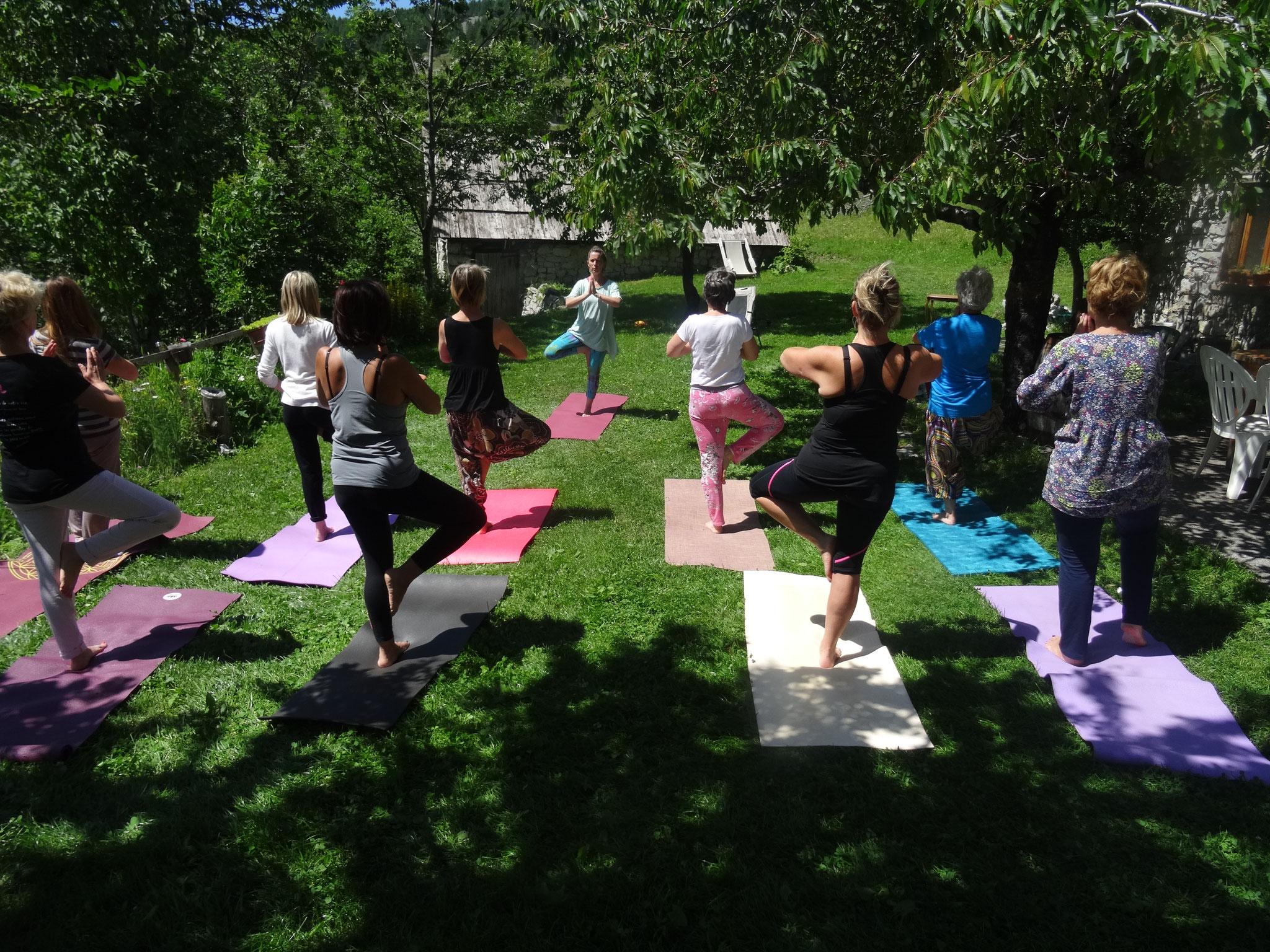 Pratique de Hatha Yoga