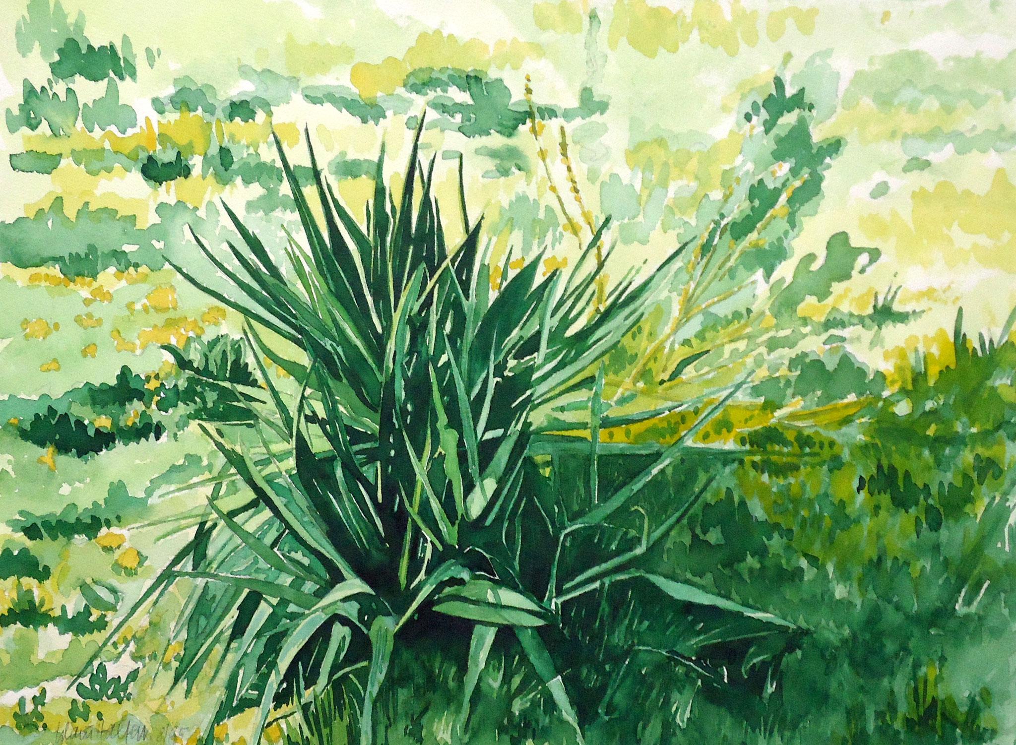 ' Gardasee ' Aquarell, 35 x 40 cm, 1995