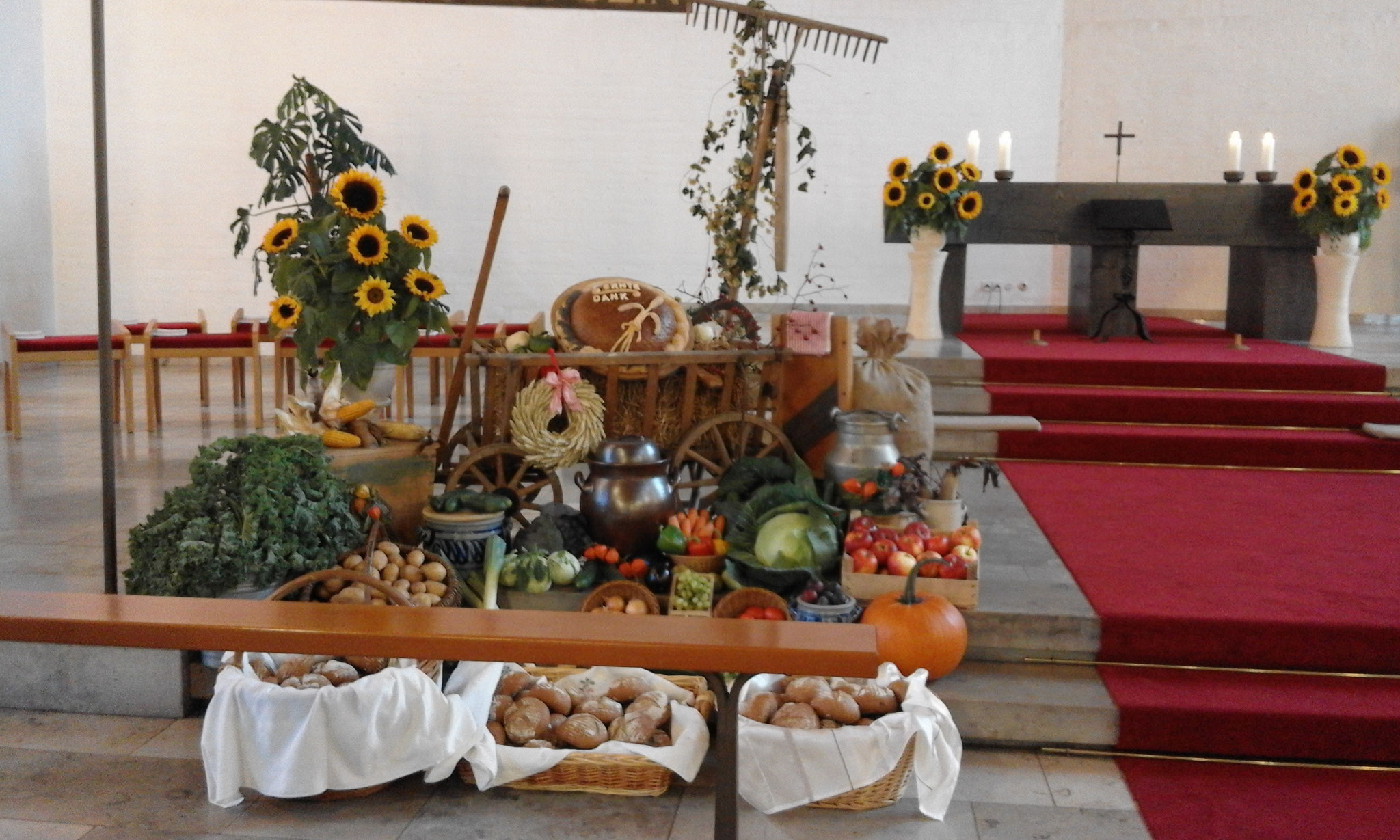 Den Erntedankaltar in der Christkönigskirche Nordendorf gestalteten auch in diesem Jahr wieder die Familie Grundgeir und Mesnerin Martina Schmidt-Dima. (Bild: Renate Grundgeir)