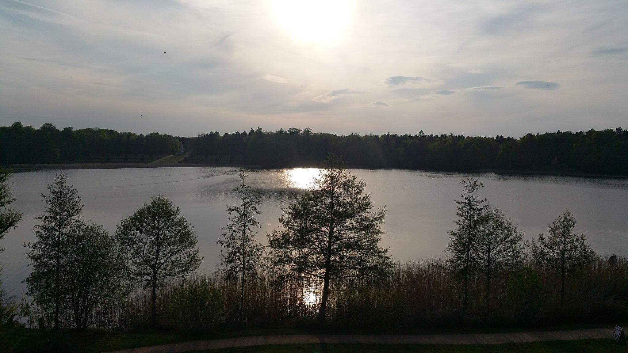Ausblick vom Zimmer auf den See