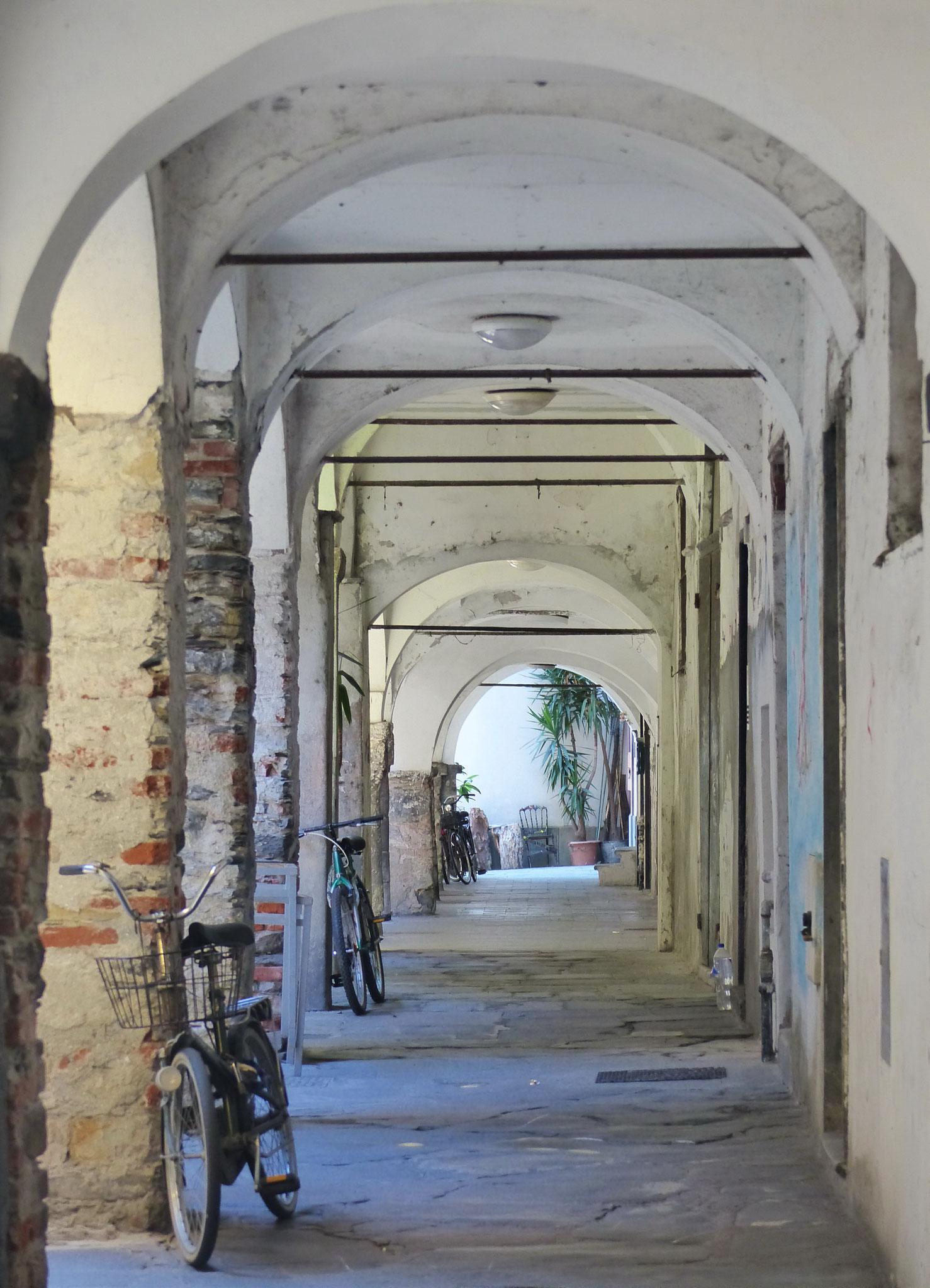 Brigitte Jainz:  Siesta der Fahrräder